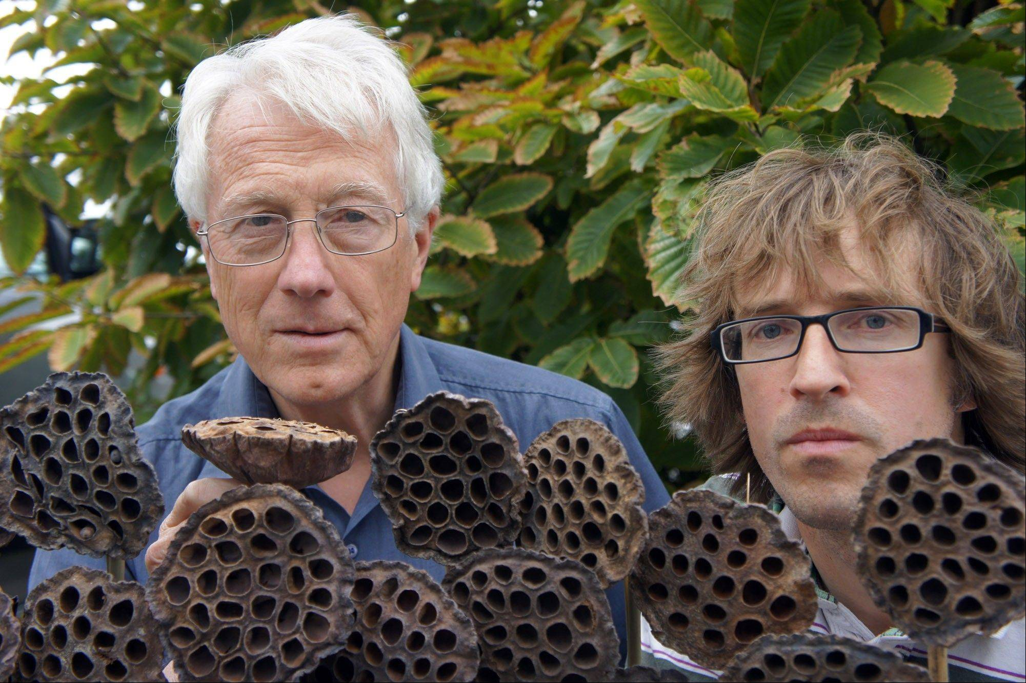 Arnold Wilkins, left, and Geoff Cole hope to show than an aversion to objects such as lotus seedpods can be seen as a phobia with an evolutionary basis.
