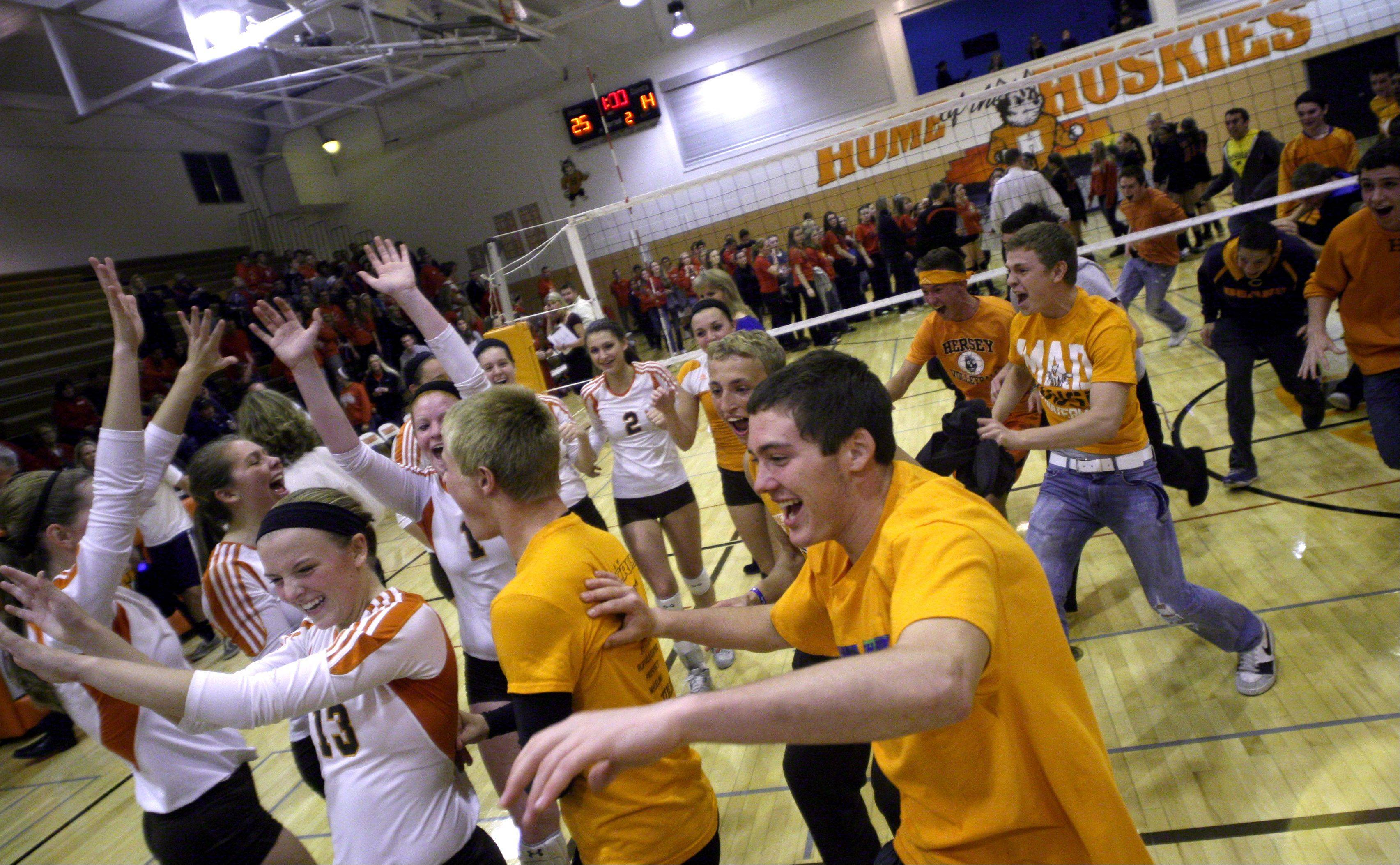 Hersey's fans mob their team after the Huskies defeated Palatine in the Mid-Suburban League championship volleyball game in Arlington Heights on Thursday night.