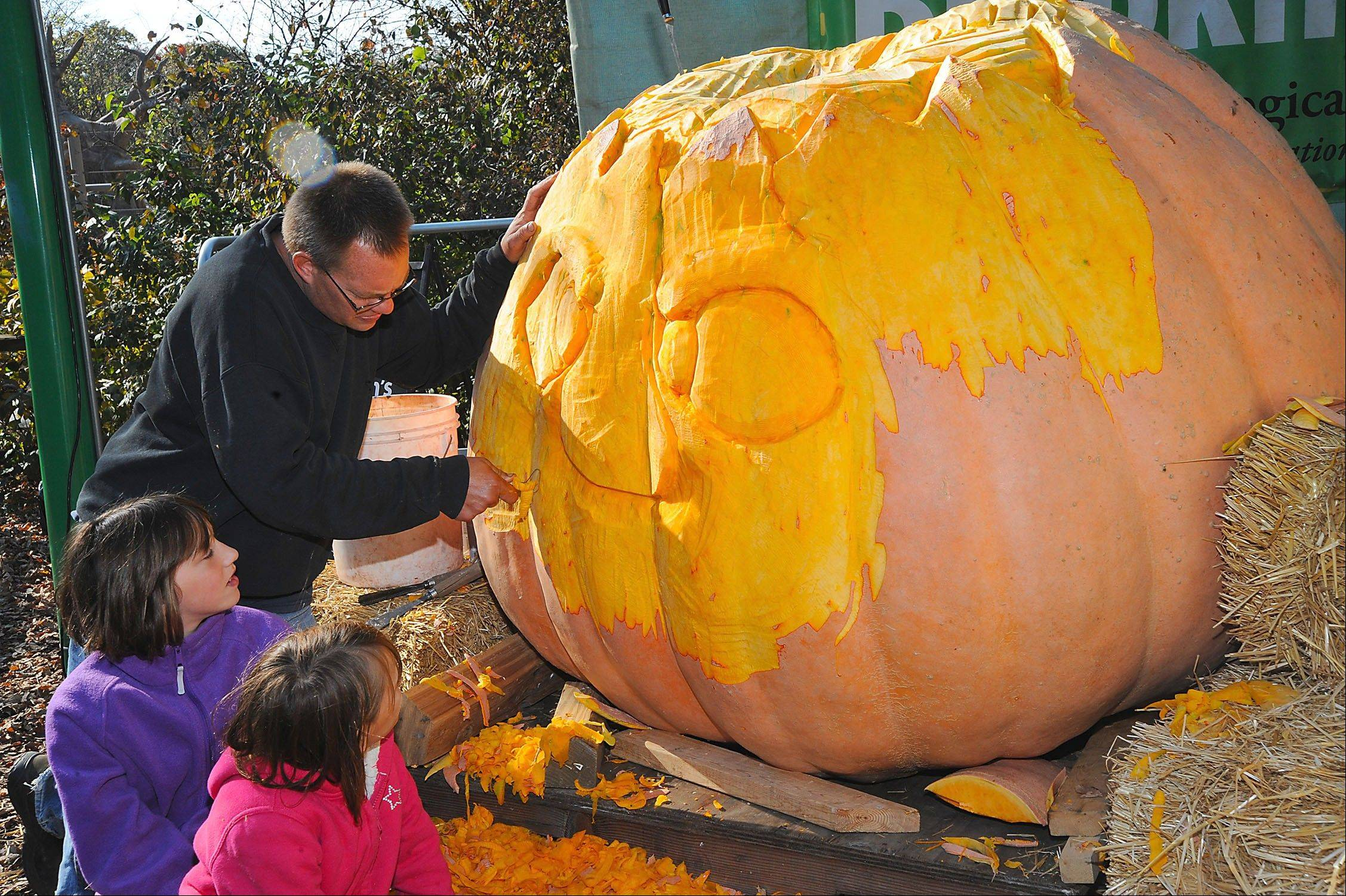 "Get some helpful pumpkin-carving tips from professional carvers at the ""Boo! at the Zoo"" celebration at Brookfield Zoo."