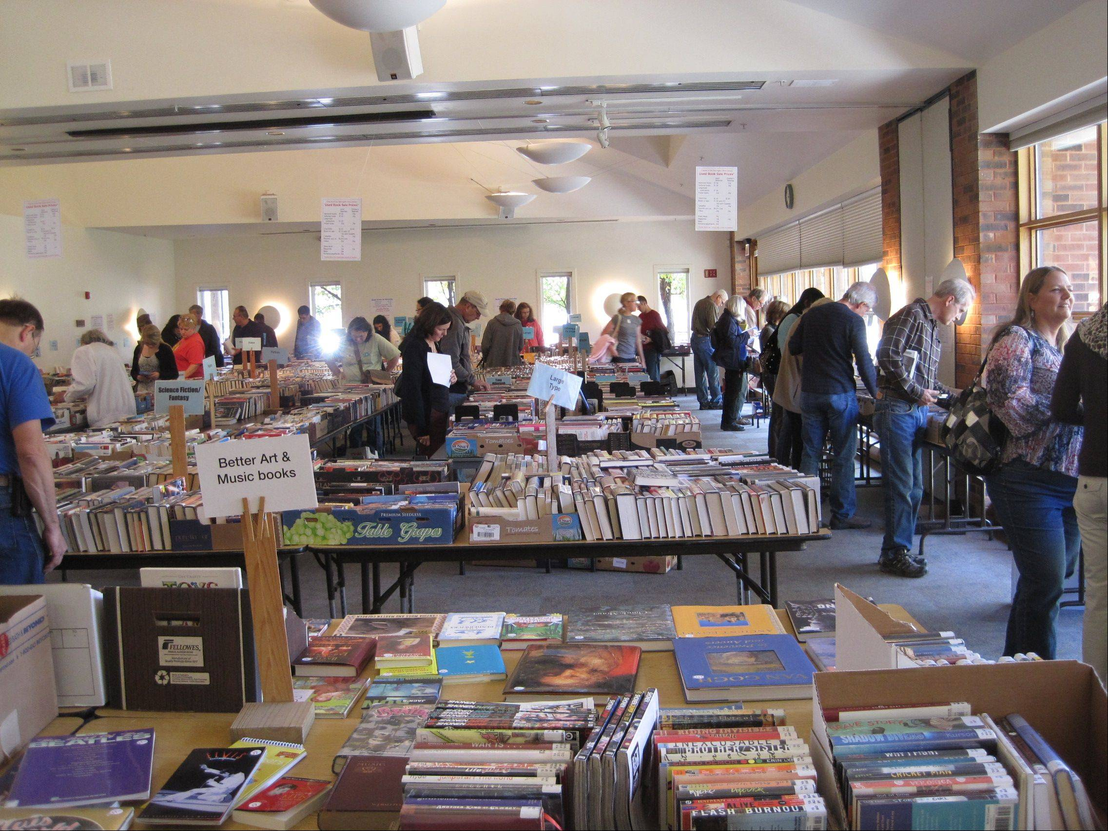 Attendance at the Friends of the Barrington Area Library book sale Saturday and Sunday was down from past years, organization members said.