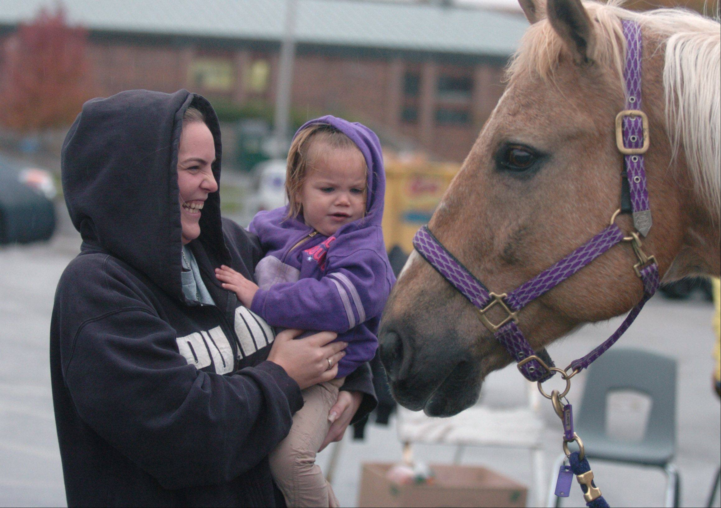 The Dupage Children's Museum hosted the folks from Ready Set Ride, a therapeutic recreation facility in Plainfield. They were letting children pet horses in honor of Disability Awareness Month. Dana And her daughter Allie, 2, both of Lombard stop to pet the horses in the rain.