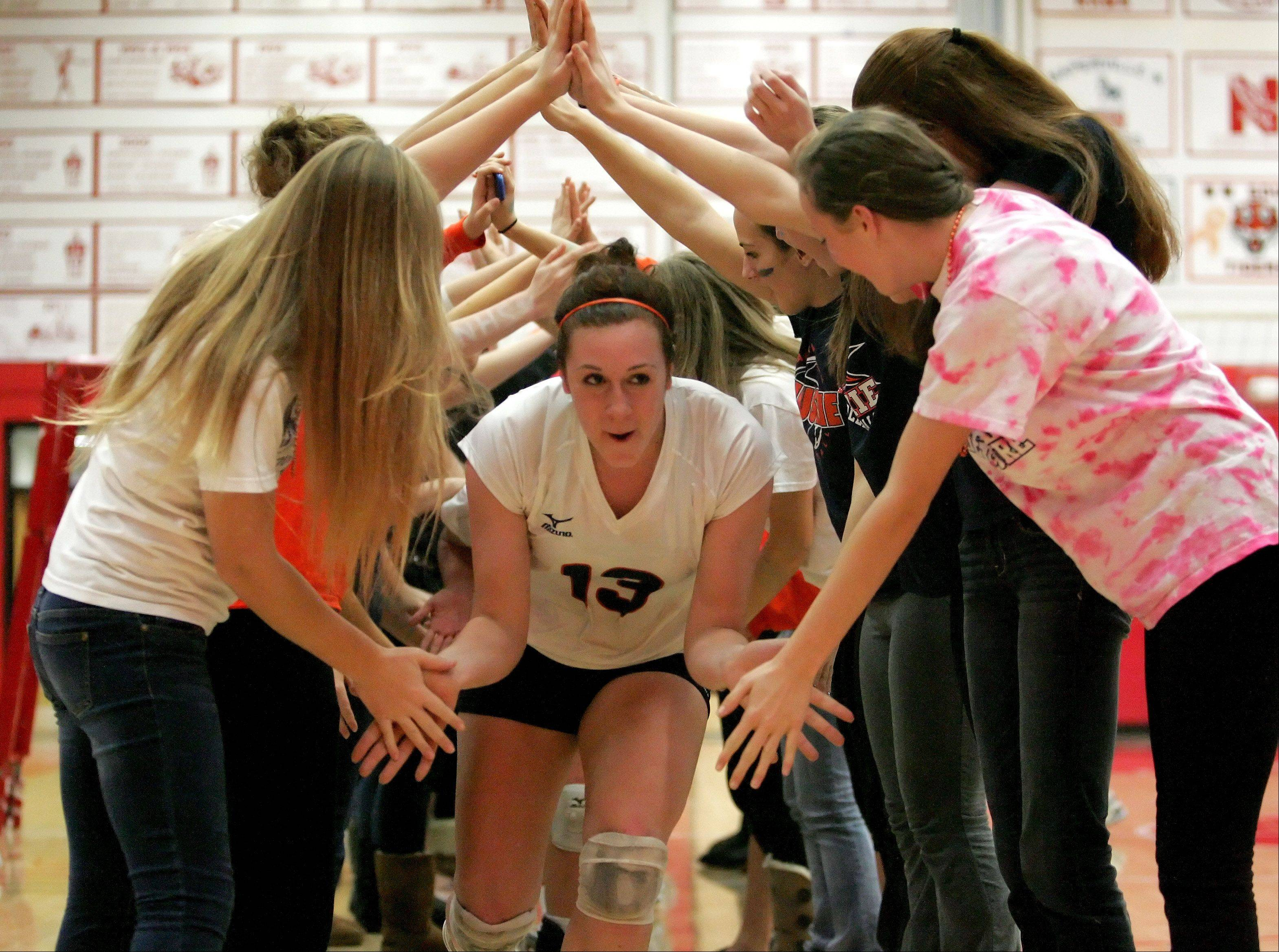 Corinne Gajcak and the rest of Naperville North come through an arch from the fans after North's win over Neuqua Valley in Class 4A girls volleyball regional semifinals at Naperville Central on Monday.