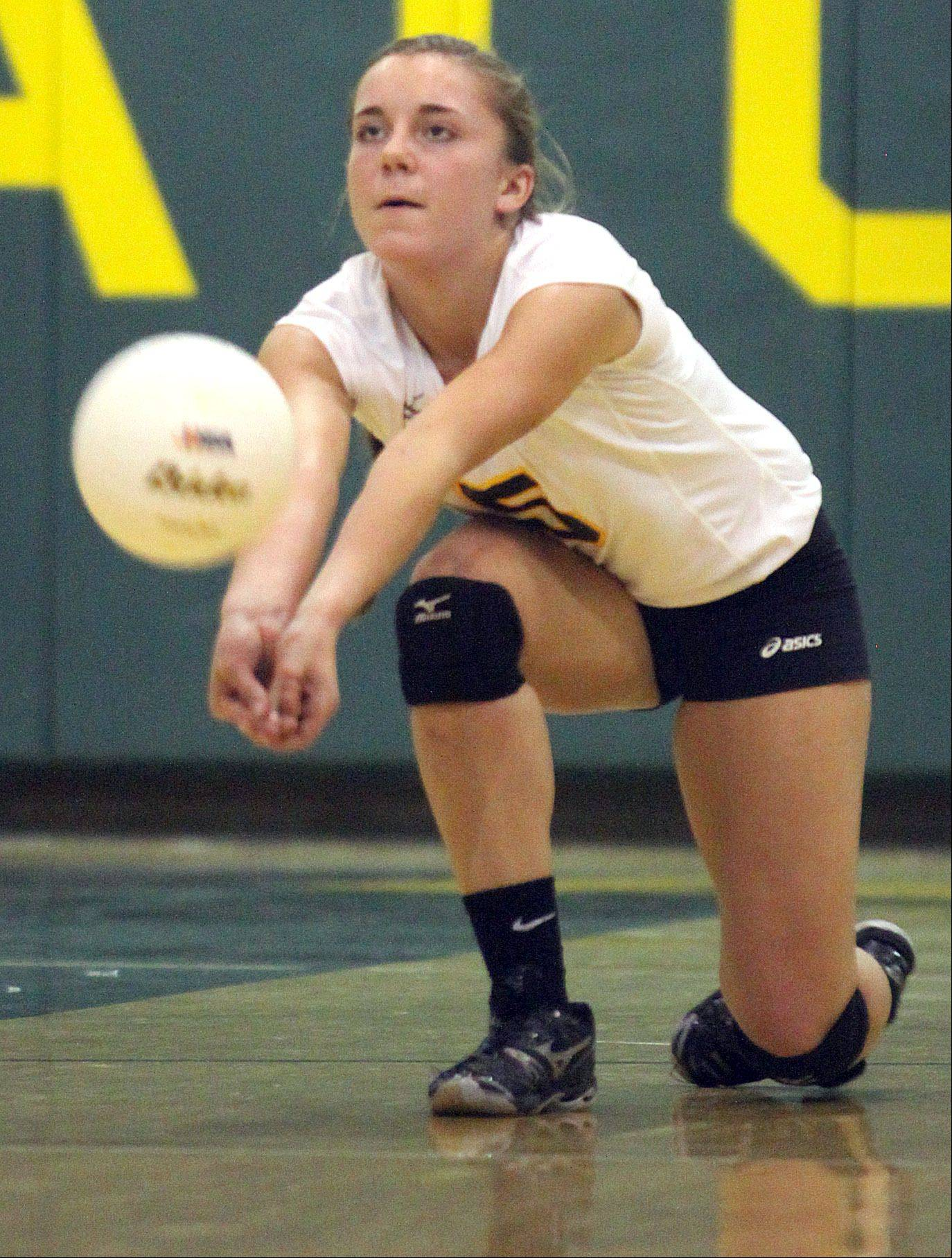 Jacobs' Maris Smith hits the ball against Dundee-Crown during a regional game at Crystal Lake South High School on Monday night.