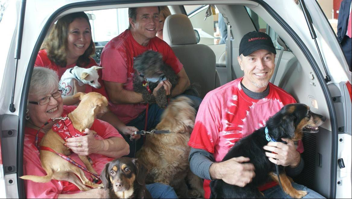"Young at Heart volunteers and some of their ""clients"" came to the dealership to accept ownership of the new Sienna. Clockwise from left they are: Dianne Kahl, foster mom and volunteer, with Snoopy and Godiva; Dawn Kemper with Cashew; Kurt Burkhardt, foster dad and volunteer, with Elmo; Paul Kawczynski, foster dad, with Frankie. Fredd is the cocker spaniel in the middle."