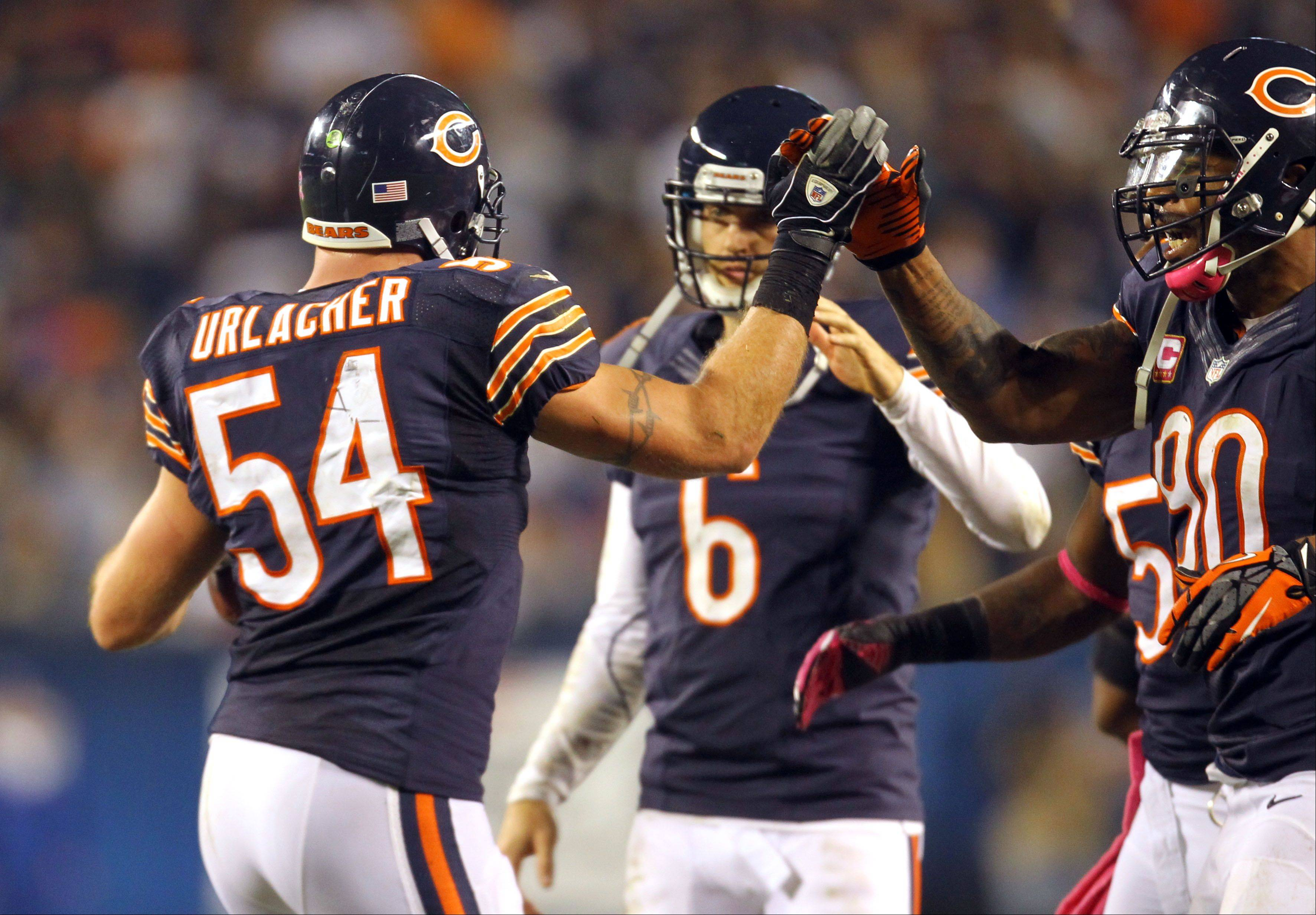 Chicago Bears middle linebacker Brian Urlacher gets high fives after recovering a fumble on the one-yard line .