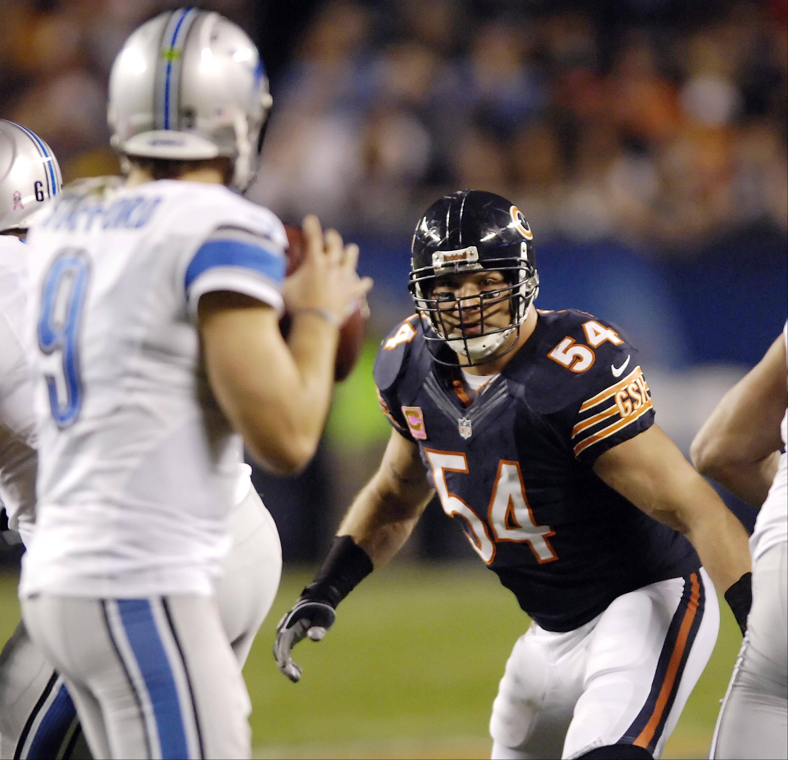 Chicago Bears middle linebacker Brian Urlacher watches Detroit Lions quarterback Matthew Stafford in the first half.