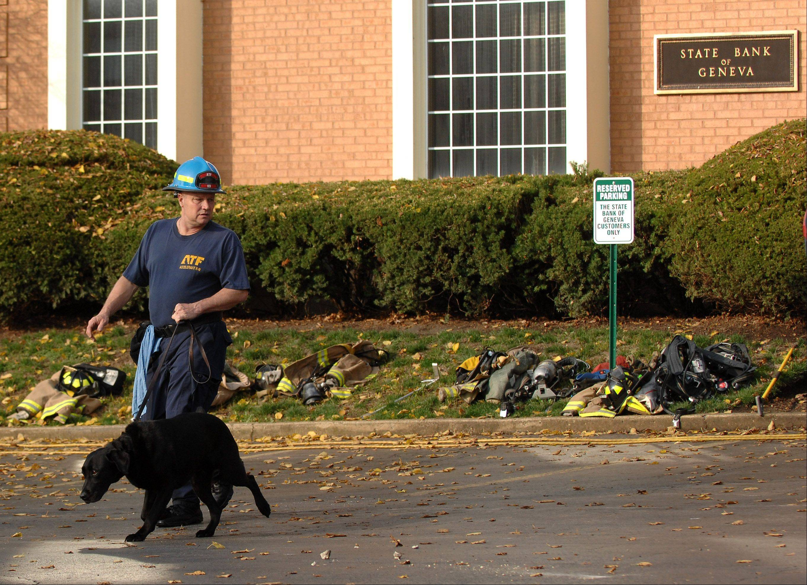 An ATF accelerant detection dog leaves the scene Wednesday morning after inspecting the State Bank of Geneva on South Fourth Street.