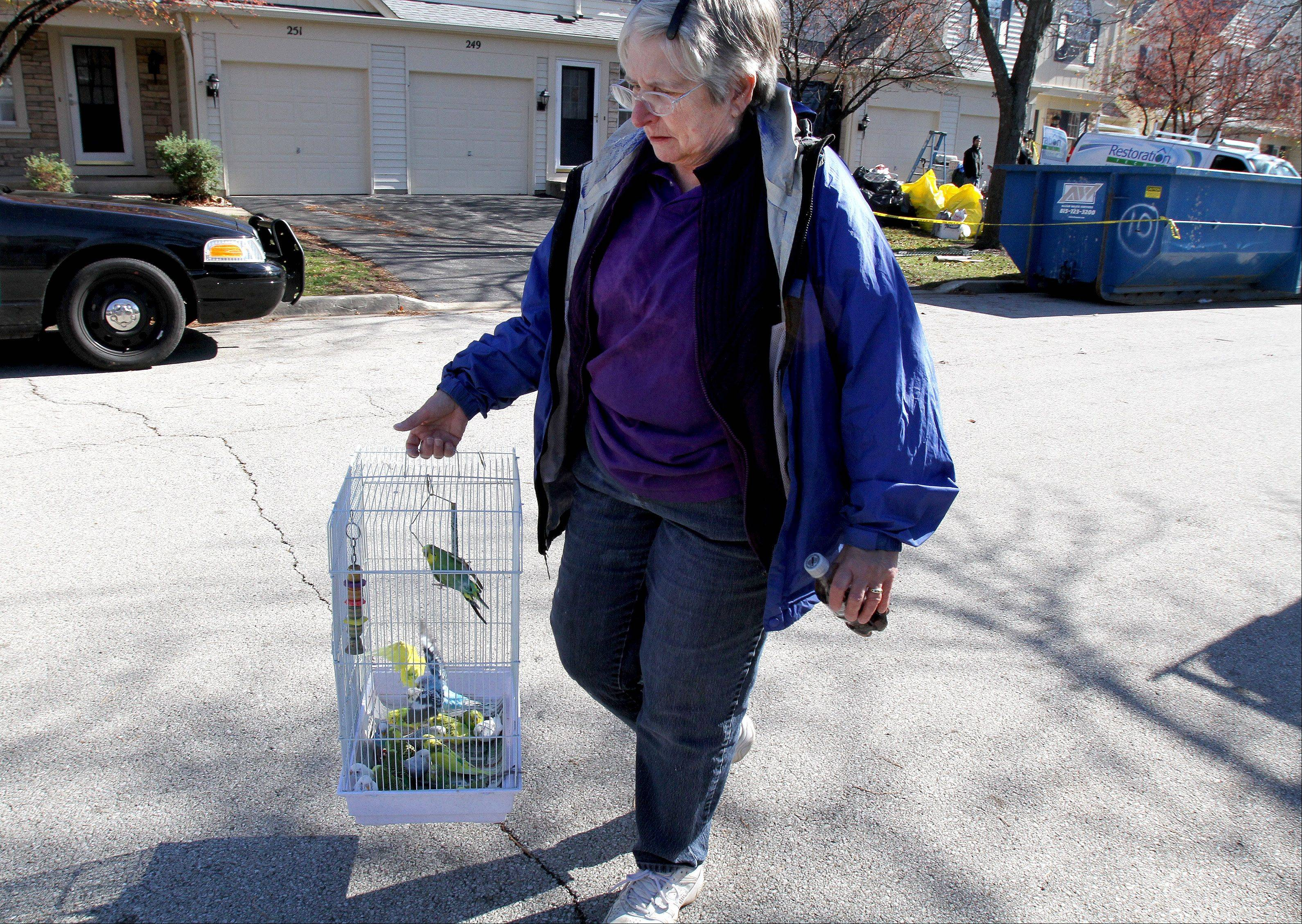 Diana Federl, head of adoption at the Greater Chicago Cage Bird Club, carries birds from a home on the 200 block of Shadybrook Lane, as the city took over clean up on Friday.