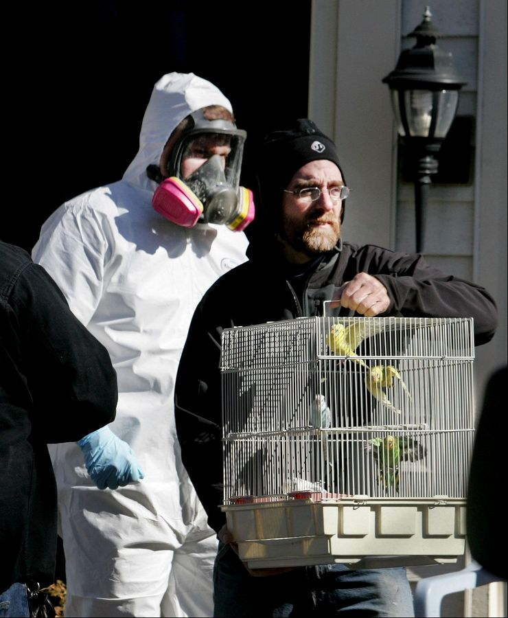 George Hallenbeck with the Greater Chicago Cage Bird Club, takes a cage of birds as the city of Aurora takes over the clean up of a home filled with birds and mounds of garbage on the 200 block of Shadybrook Lane.
