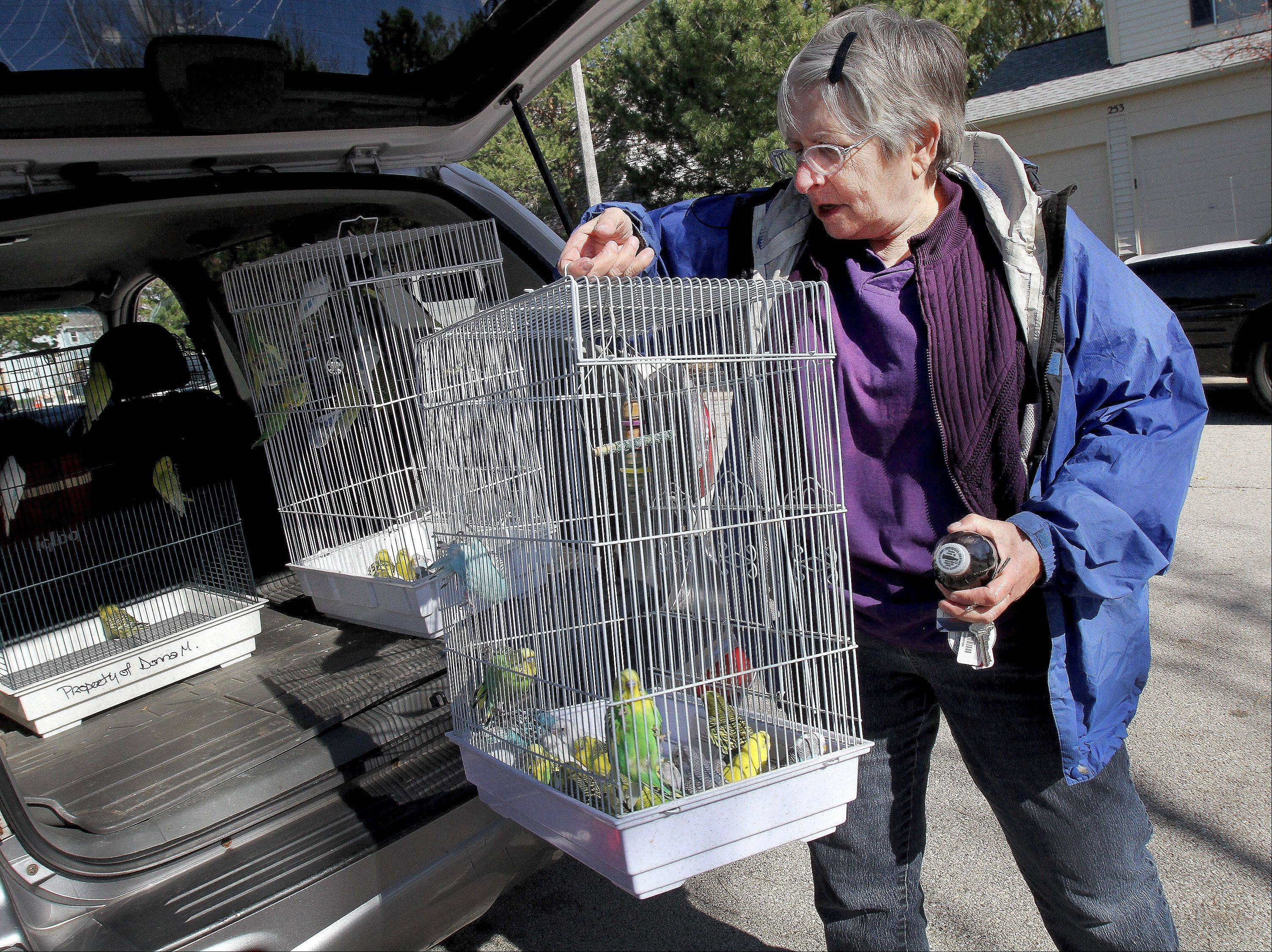 Volunteers like Diana Federl, head of adoption at the Greater Chicago Cage Bird Club, coached workers on how to remove hundreds of birds from a home that was also filled with garbage on the 200 block of Shadybrook Lane.