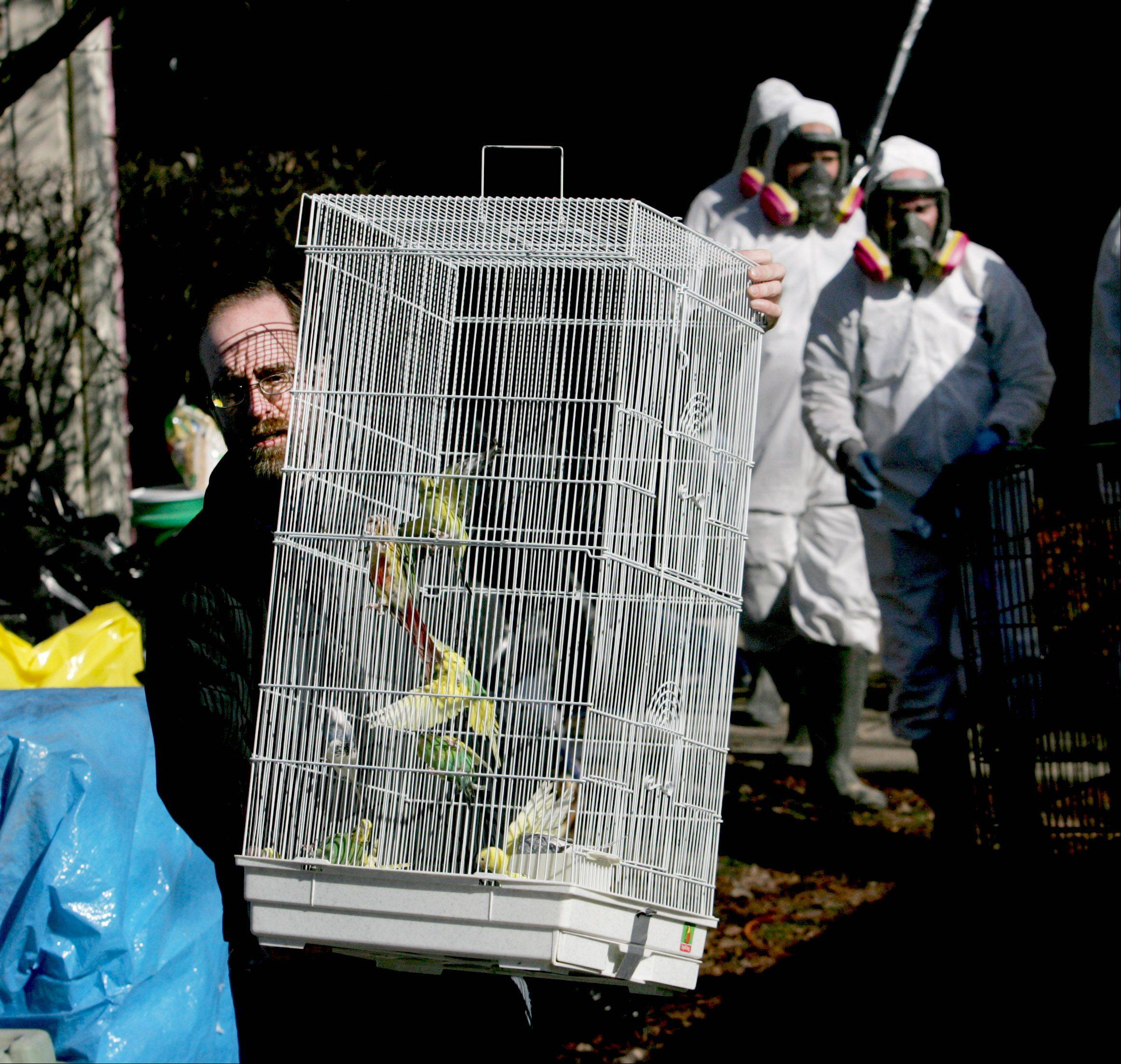 George Hallenbeck with the Greater Chicago Cage Bird Club, carries a cage of birds that were taken from a house on the 200 block of Shadybrook Lane.