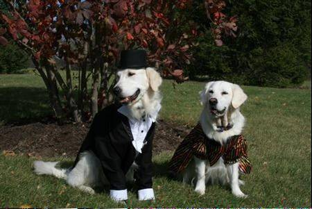 Brother/Sister team. Homemade tux complete with black tails and top hat. His sister has a colorful dress to compliment him.
