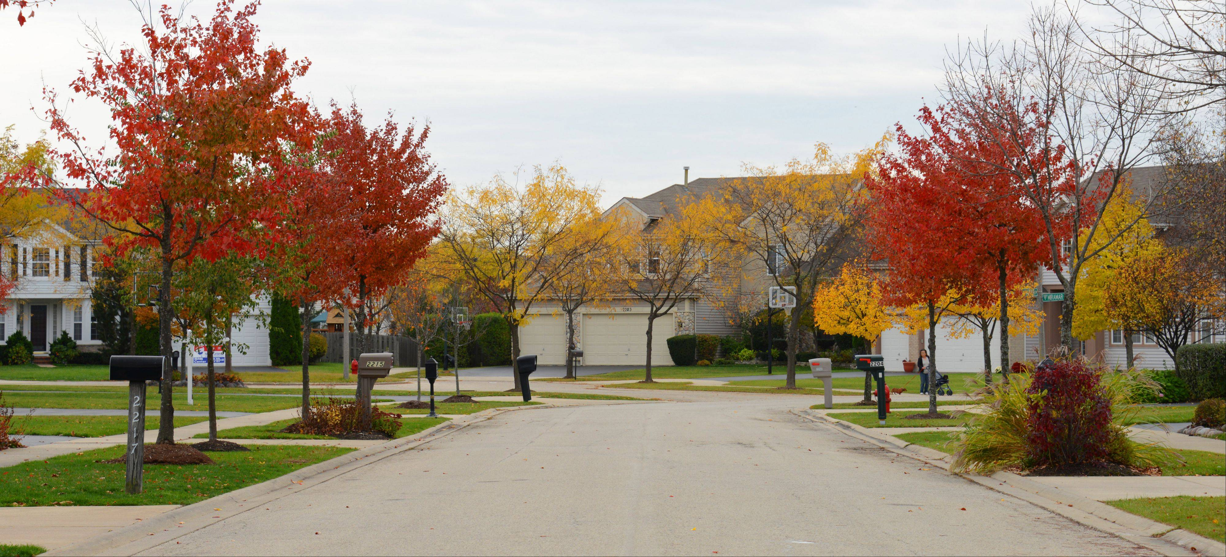 The houses in Buffalo Grove�s Mirielle neighborhood were built by Town and Country Homes in the late 1990s.