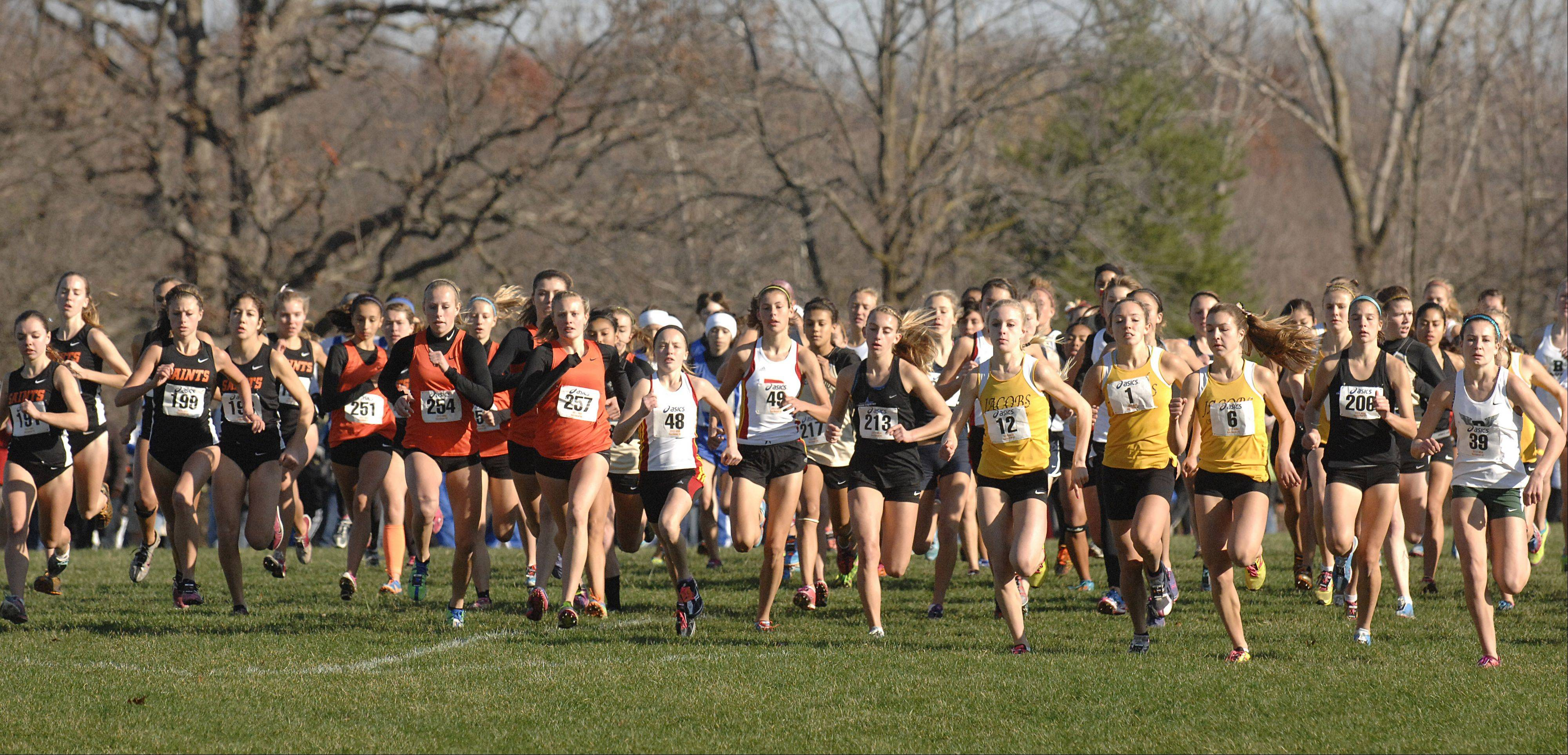 The girls take off at the start of the St. Charles East cross country sectional at LeRoy Oakes in St. Charles on Saturday, October 27.