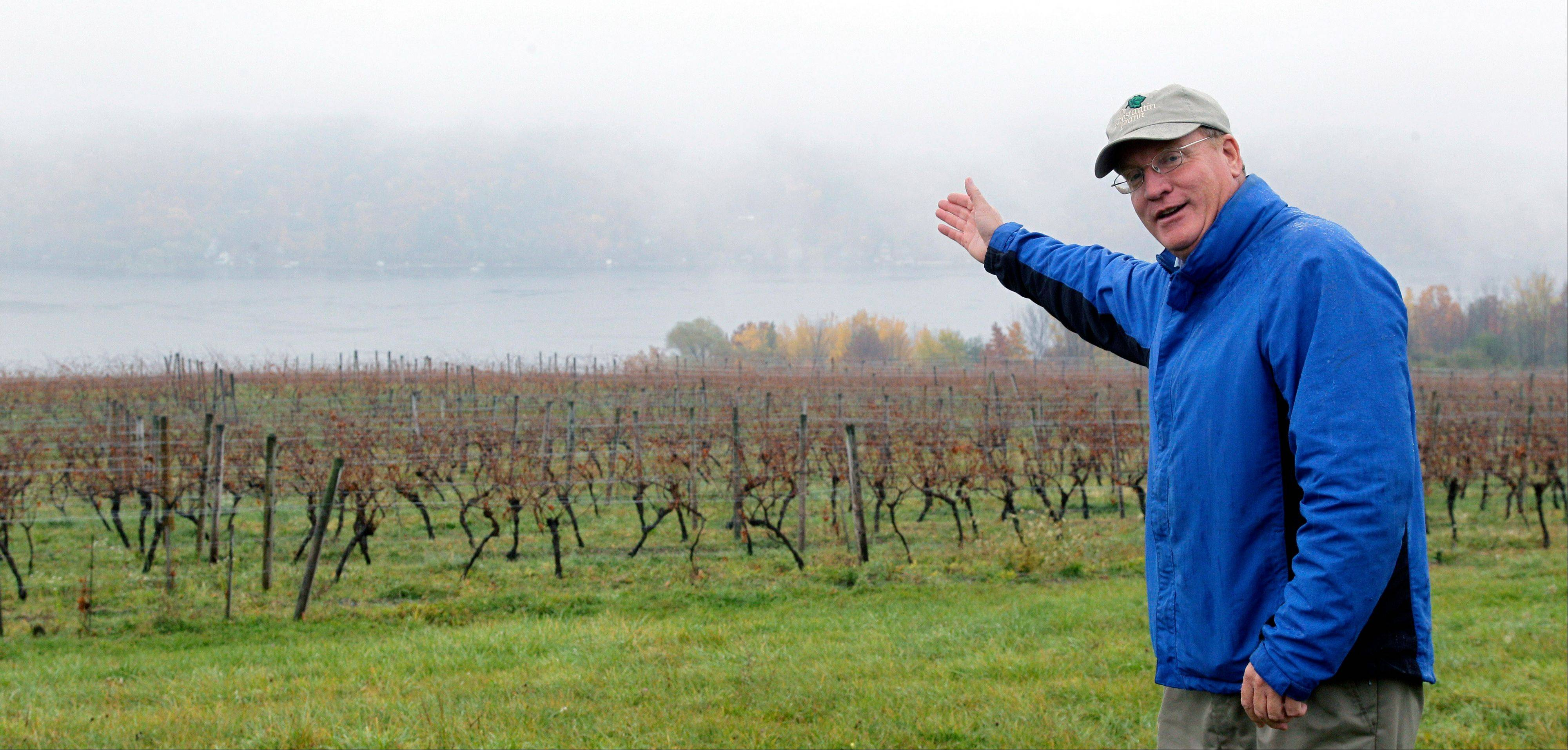 Fred Frank poses Tuesday for a photo in his vineyard at Dr. Konstantin Frank Vinifera Wine Cellars in Hammondsport, N.Y. Frank, grandson of Dr. Konstantin Frank, worries the region's carefully tended reputation is in danger if tourists who make the long trip up from the New York City area and elsewhere have to deal with traffic created by gas drilling.