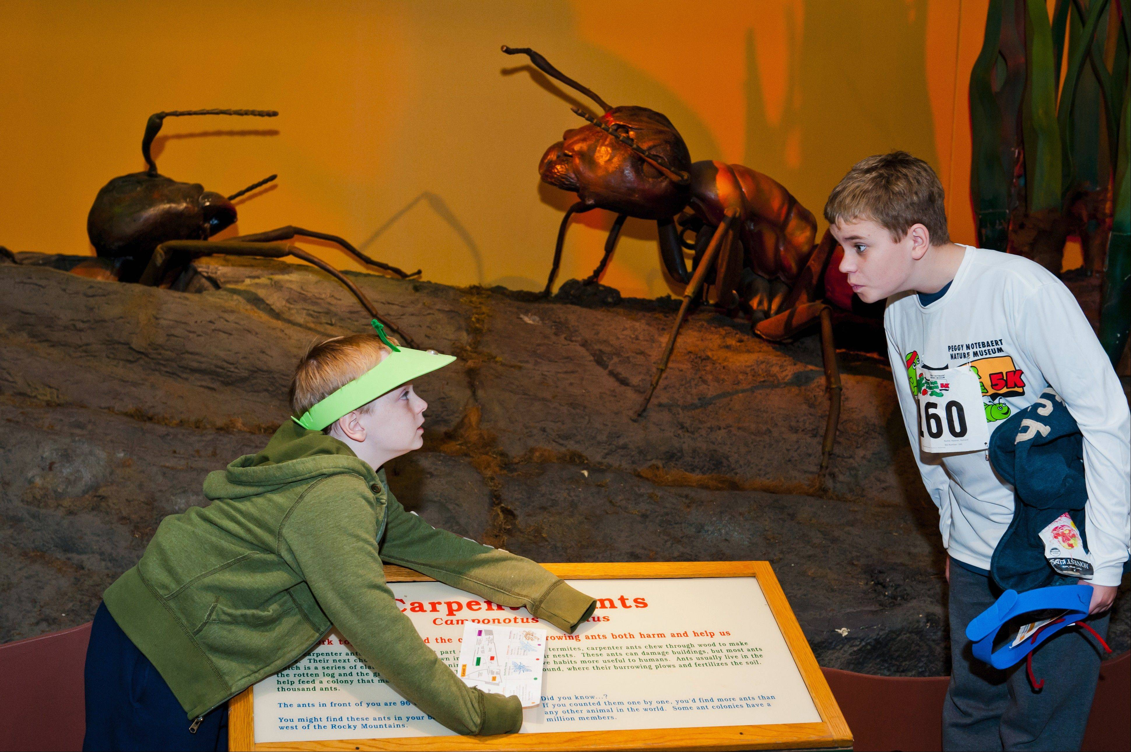 Young students will enjoy the giant animatronic creatures in the Backyard Monsters exhibit at the Peggy Notebaert Nature Museum.