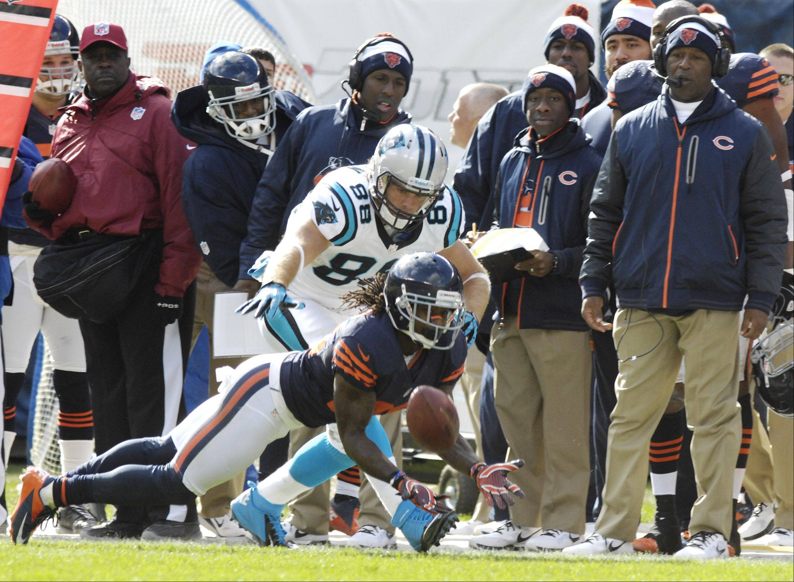 Chicago Bears cornerback Tim Jennings makes a second-quarter interception in front of Carolina Panthers tight end Greg Olsen during Sunday's game at Soldier Field.