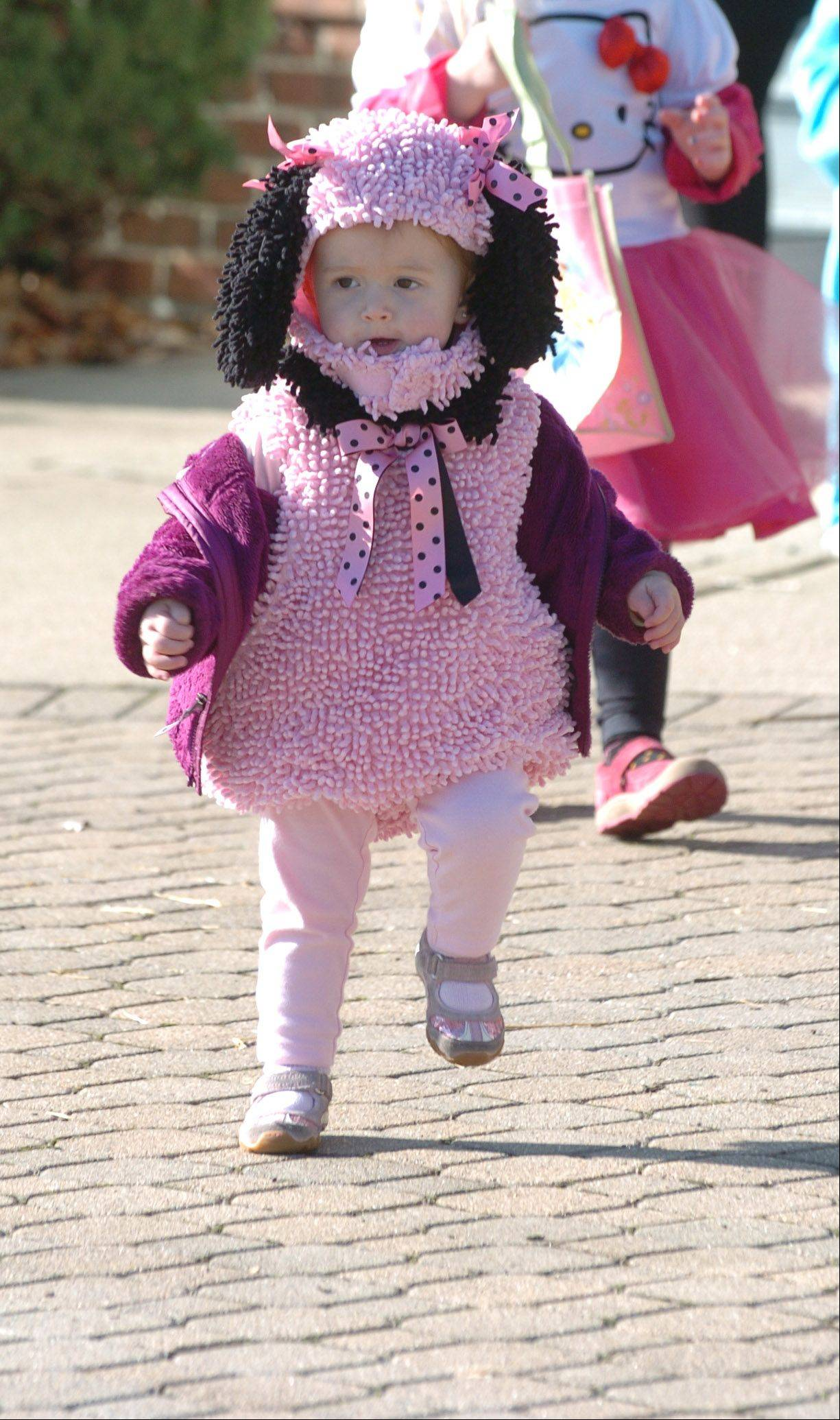 Abigail Knox of Elmwood Park is all smiles while taking part in the Naperville's Junior Women's Club annual trick or treat at Safety Town in Naperville Saturday. She was dressed like a dog.