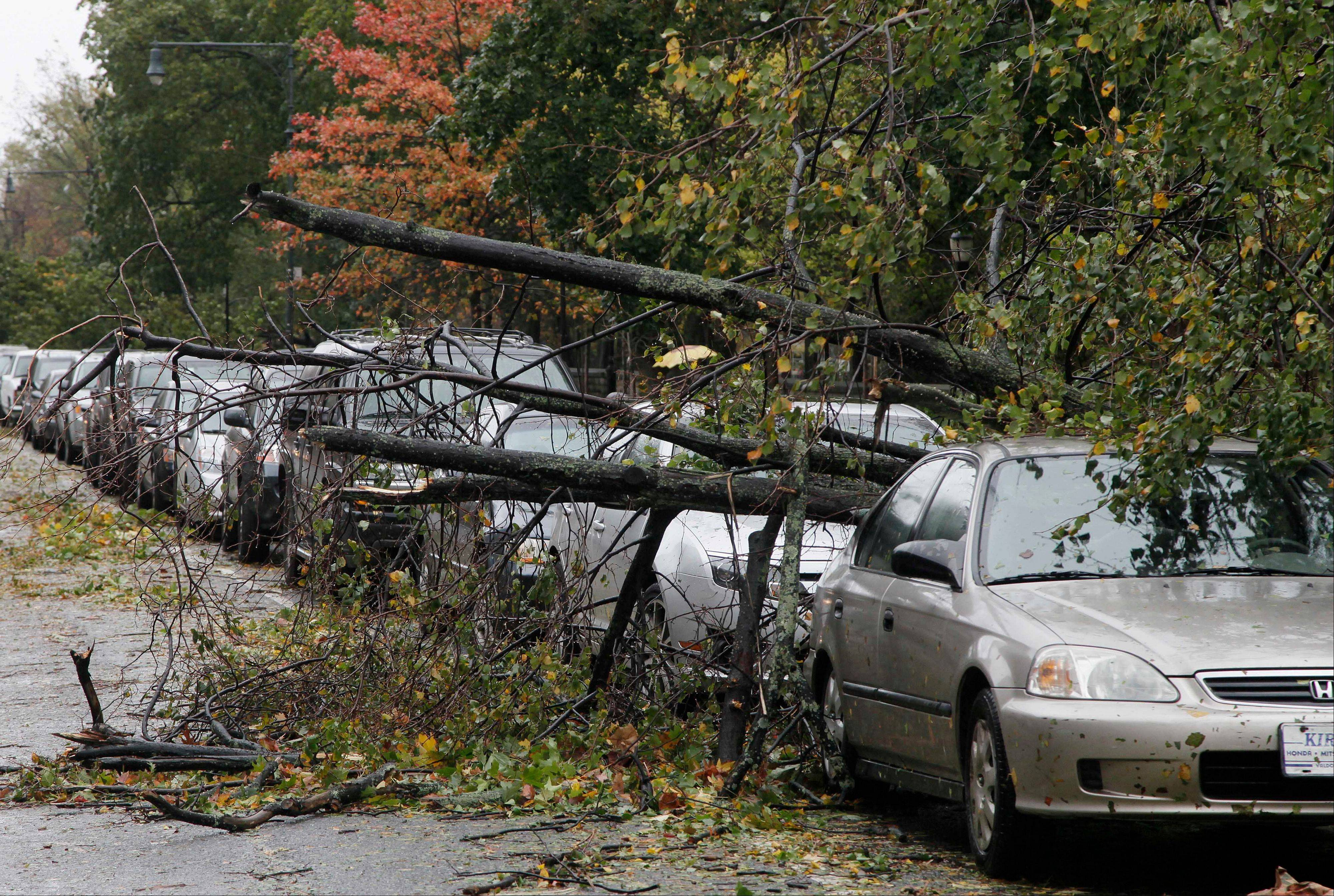 Trees lie fallen across parked cars in the Brooklyn borough of New York the morning after superstorm Sandy made landfall, Tuesday, Oct. 30, 2012. A record storm surge that was higher than predicted along with high winds damaged the electrical system and plunged millions of people into darkness. Utilities say it could be up to a week before power is fully restored.