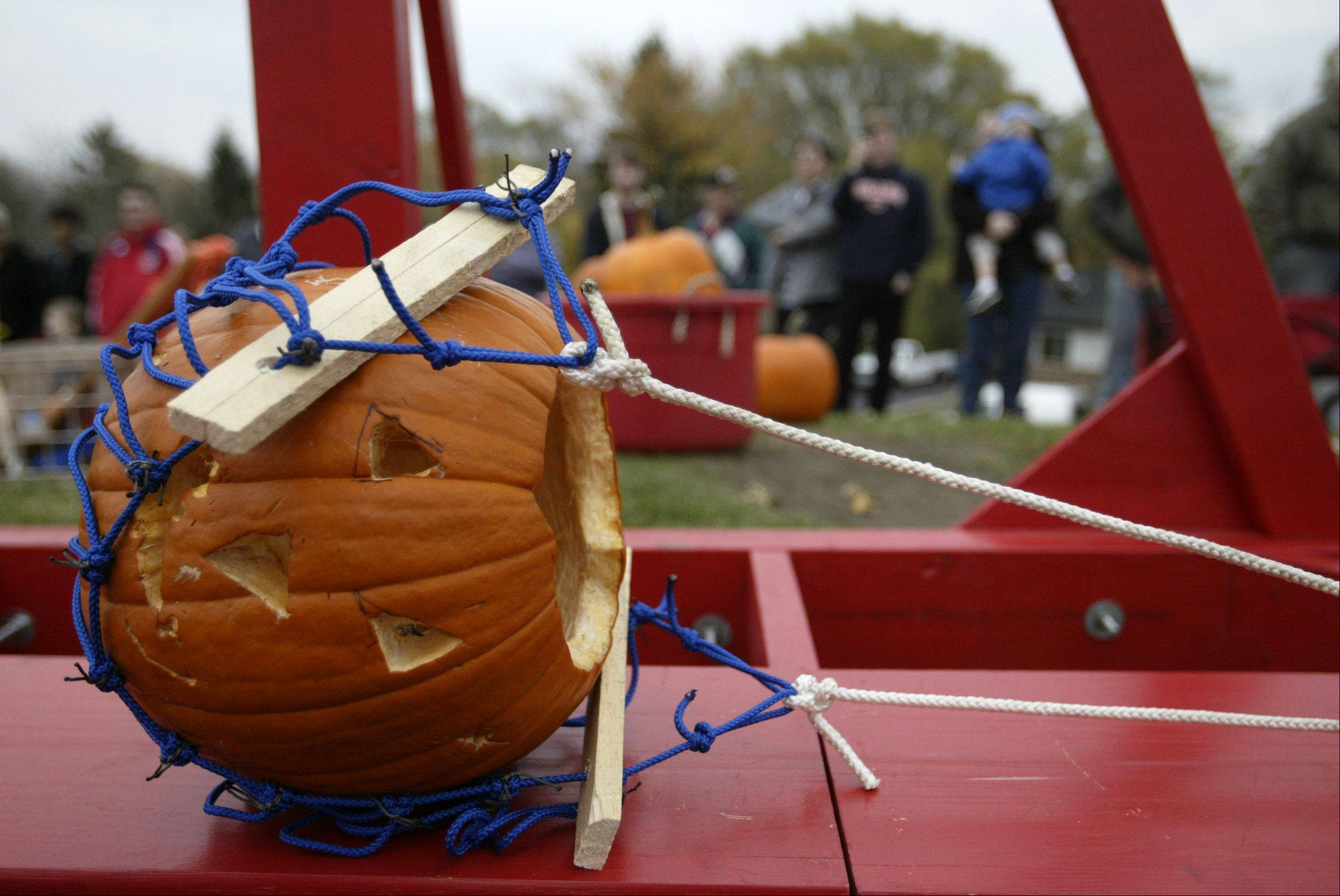 Watch pumpkins fly in Mundelein at the Annual Pumpkin Drop.