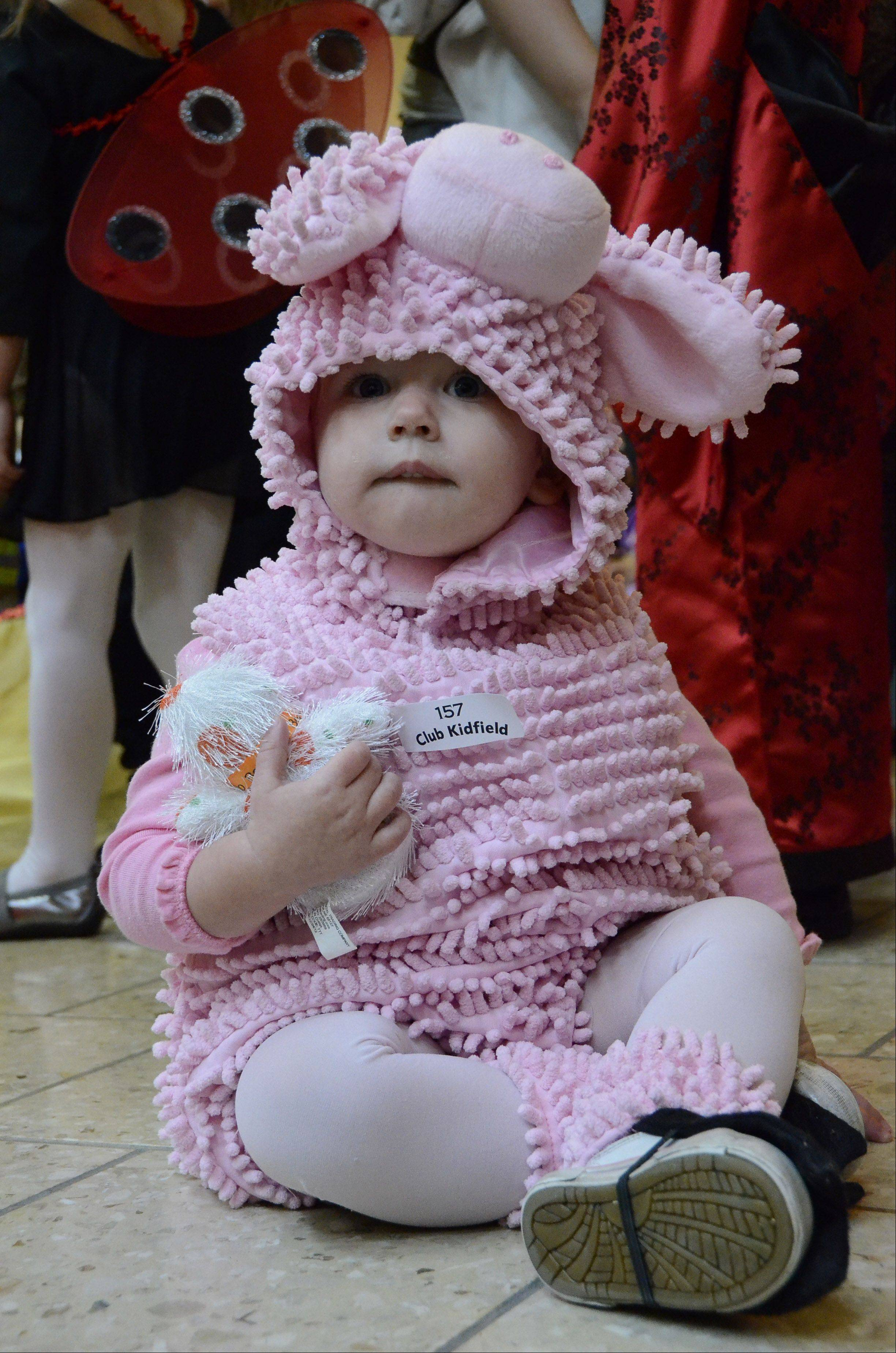 Ashley Jaski, 1, of Chicago, is dressed as a pink pig at the Halloween Bash hosted Wednesday by the Woodfield Mall in Schaumburg.