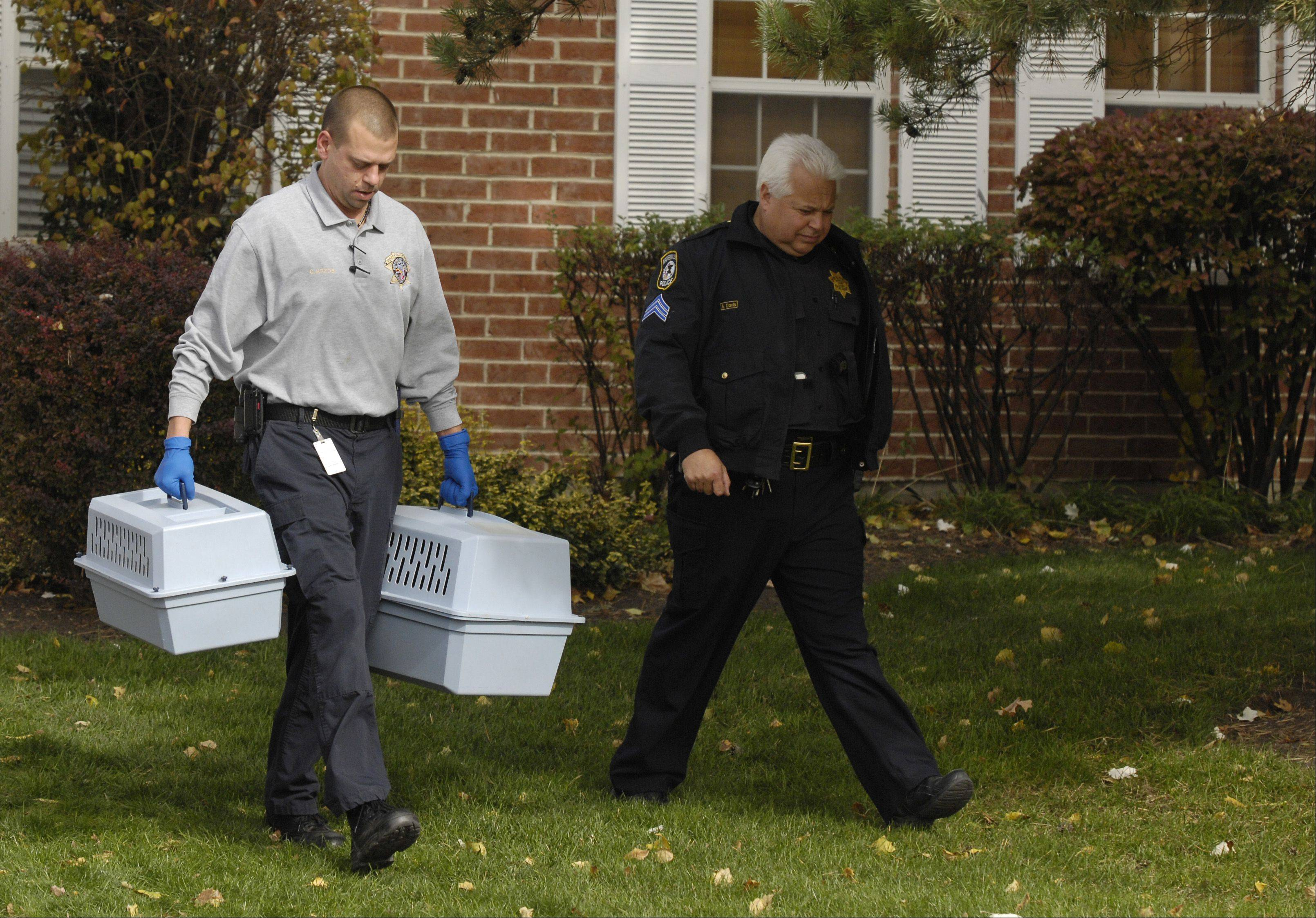 Naperville Animal Control removes two pets who were presumably killed along with two children at a home on the 800 block of Quin Court in Naperville.