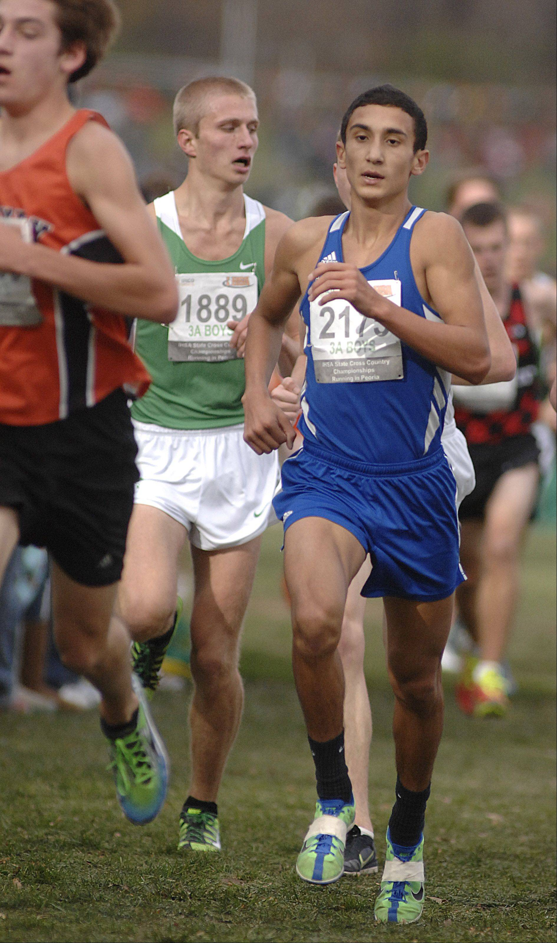 Laura Stoecker/lstoecker@dailyherald.comWarren's Martin Martinez in the state cross country 3A final in Peoria on Saturday, November 3.