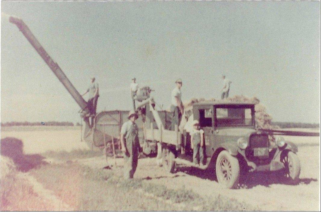 Grandpa Bill Ternes, in foreground wearing a hat, uses his Chevrolet Capital truck while working a Wisconsin hayfield in 1951.