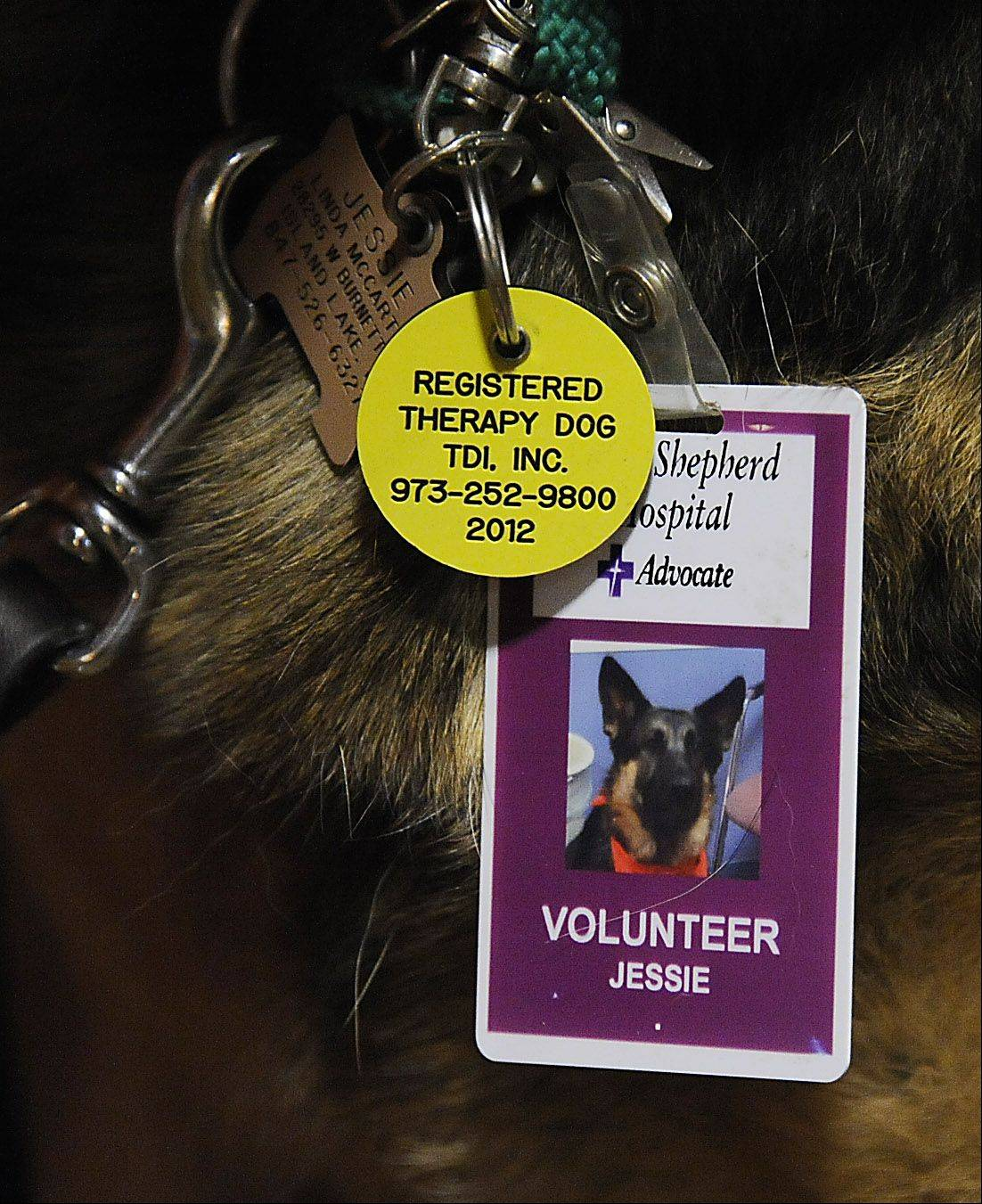 Jessie is a volunteer in good standing with Advocate Good Shepherd Hospital in Barrington.