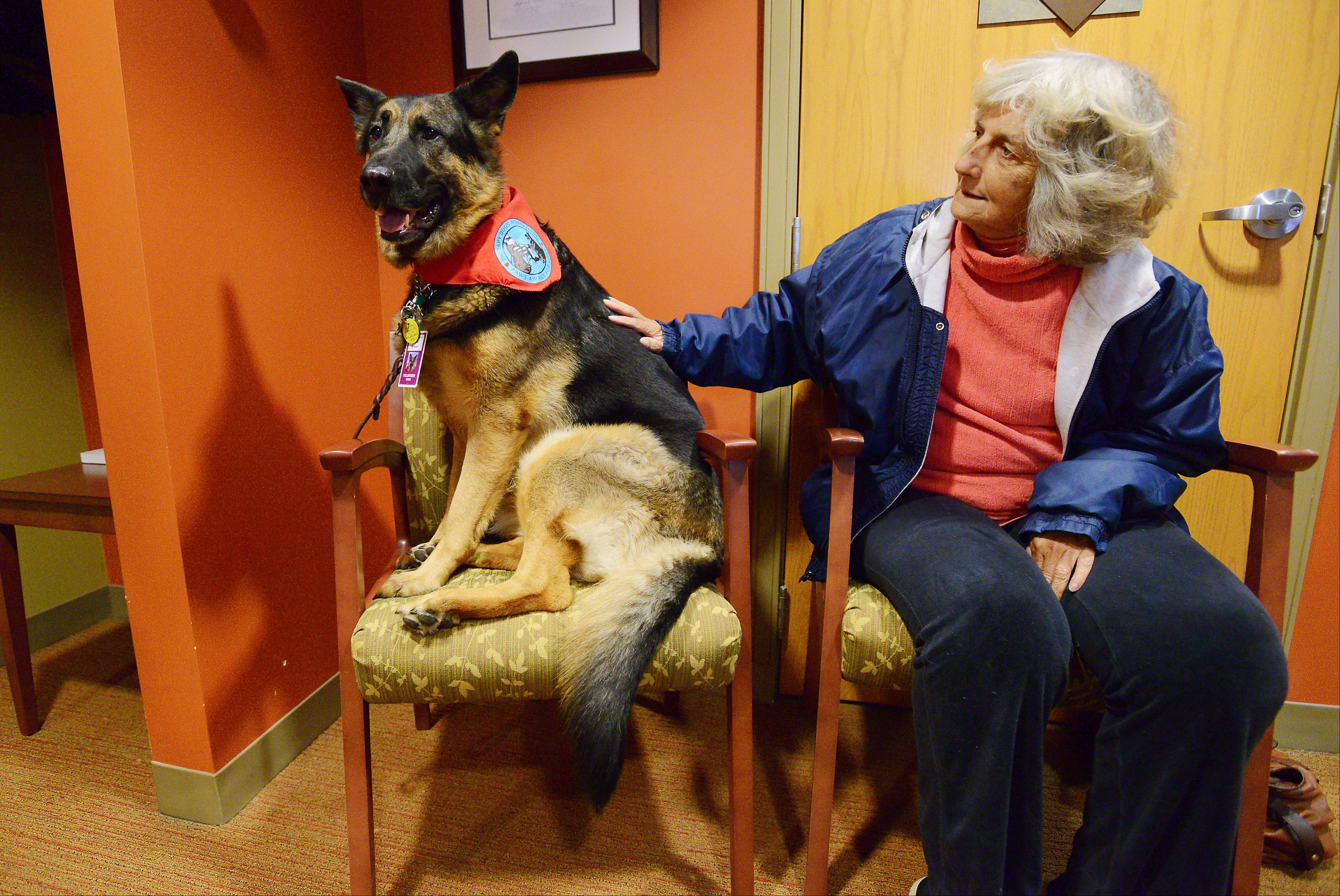 Jessie visits with Patti Saylor of Round Lake Beach as she waits for treatment. He is trained to jump onto chairs so patients don't have to reach down to pet him.