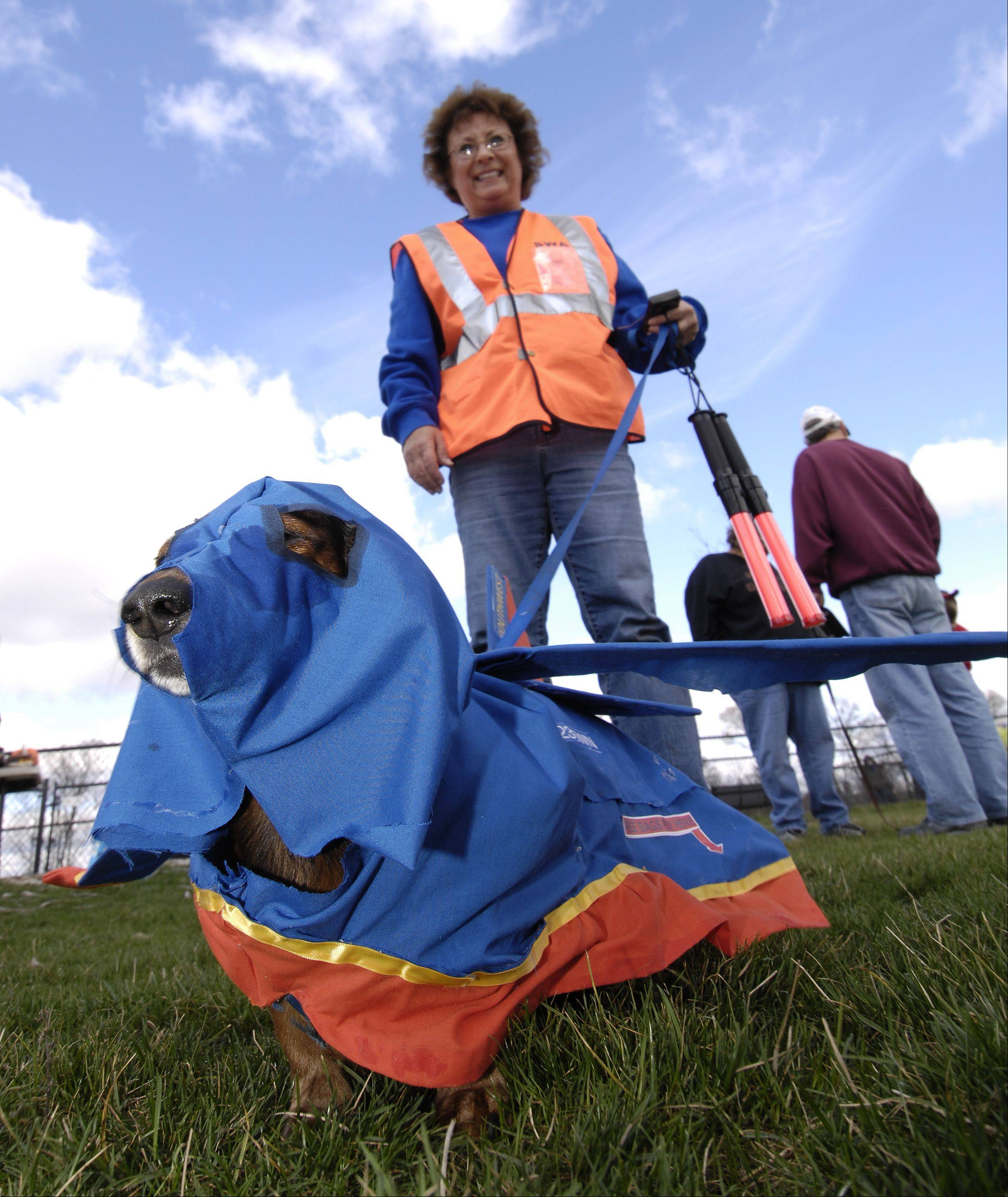 "Sharon Rodkey and her dog ""Copper"" dress up as a jet plane and ground control manager during the Carol Stream Park District's Halloween Dog Parade at the Bark Park, Sunday."