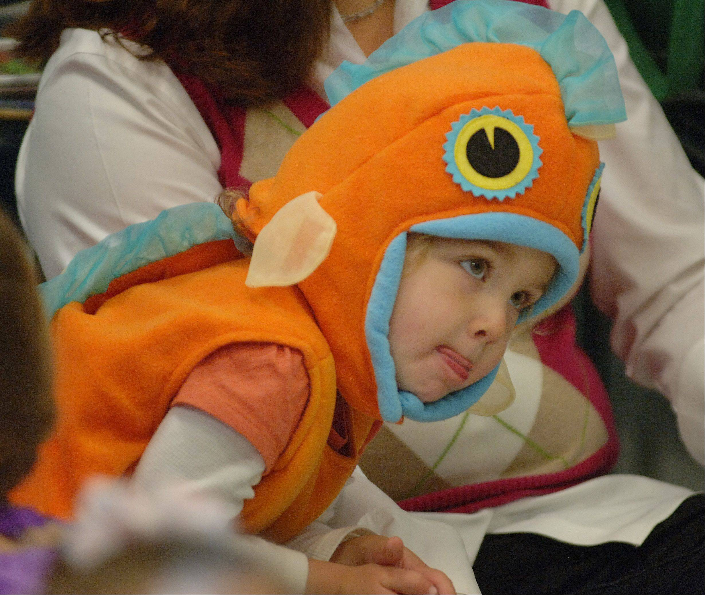 The Grayslake Public Library held a Halloween story time and trick-or-treat costume parade. Piper Johnson, 3 of Round Lake, dressed as a goldfish for the event.