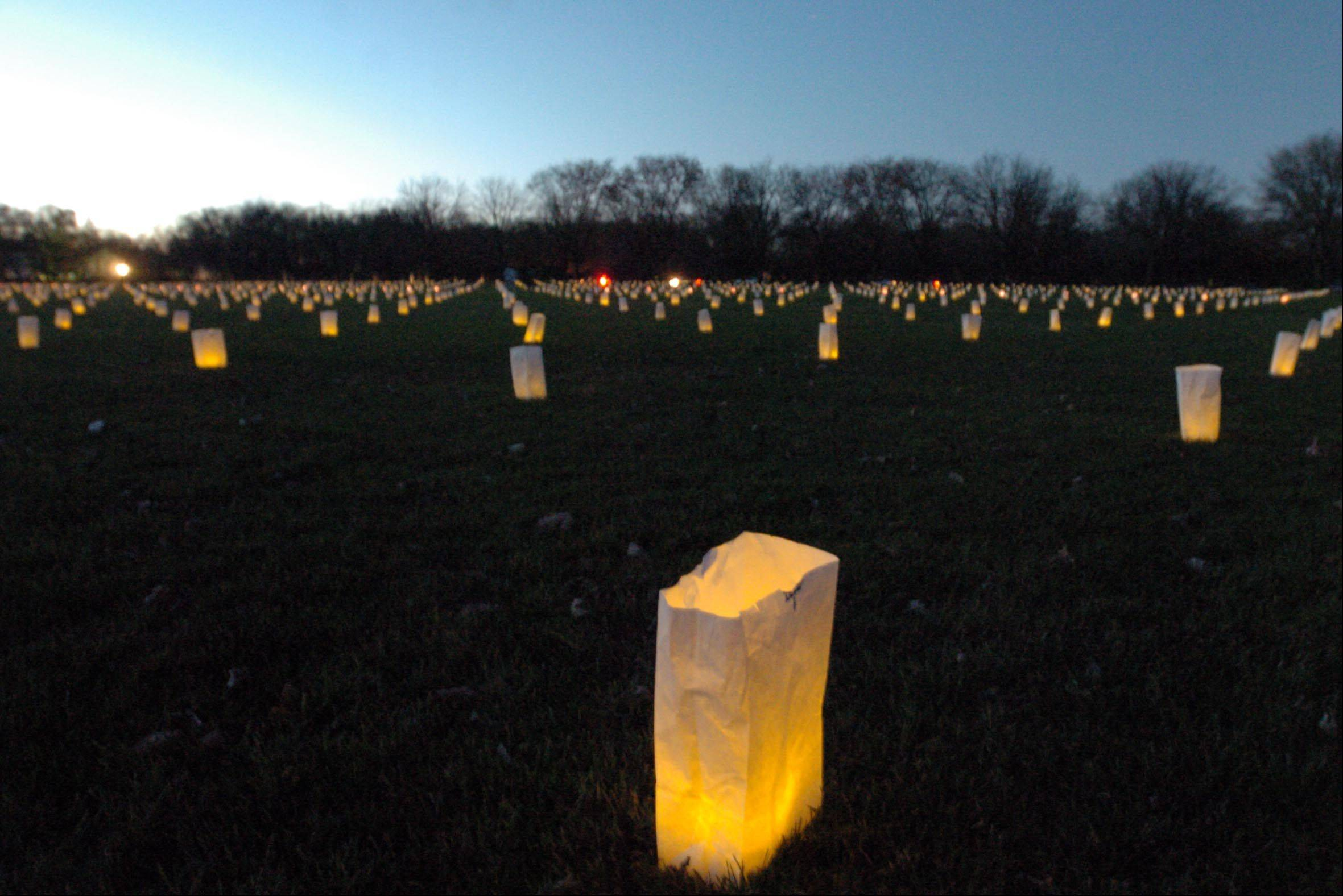 PAUL MICHNA/PMICHNA@DAILYHERALD.COM About 2,200 luminaries will be lit up to honor U.S. veterans at Cantigny Park in Wheaton.
