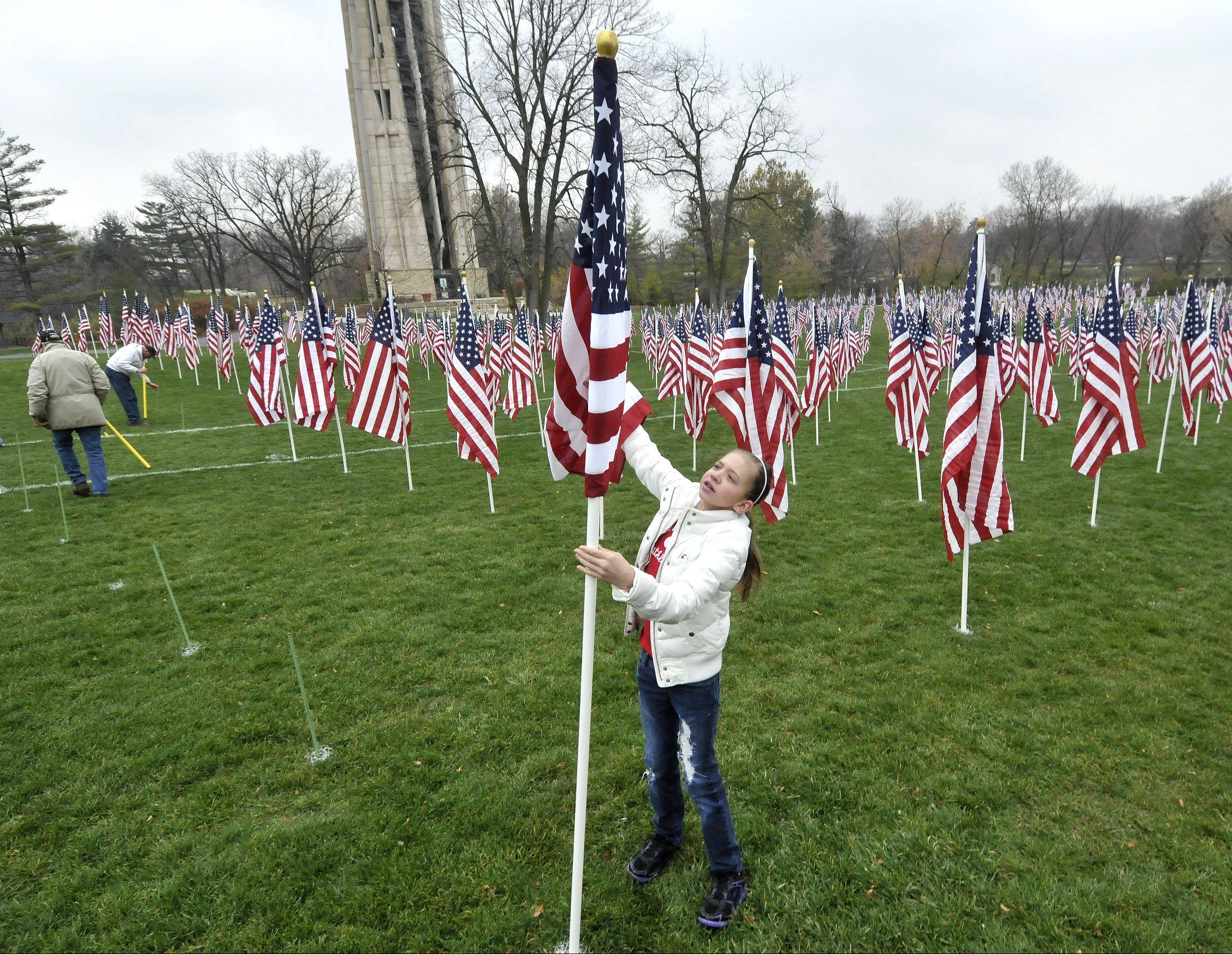 Home school student Sarah Borish, from Naperville, was one of the volunteers from several local organizations who spent Wednesday putting up the flags at Rotary Hill in Naperville. Attendees can honor specific service members by attaching yellow tags to a flag at the display.
