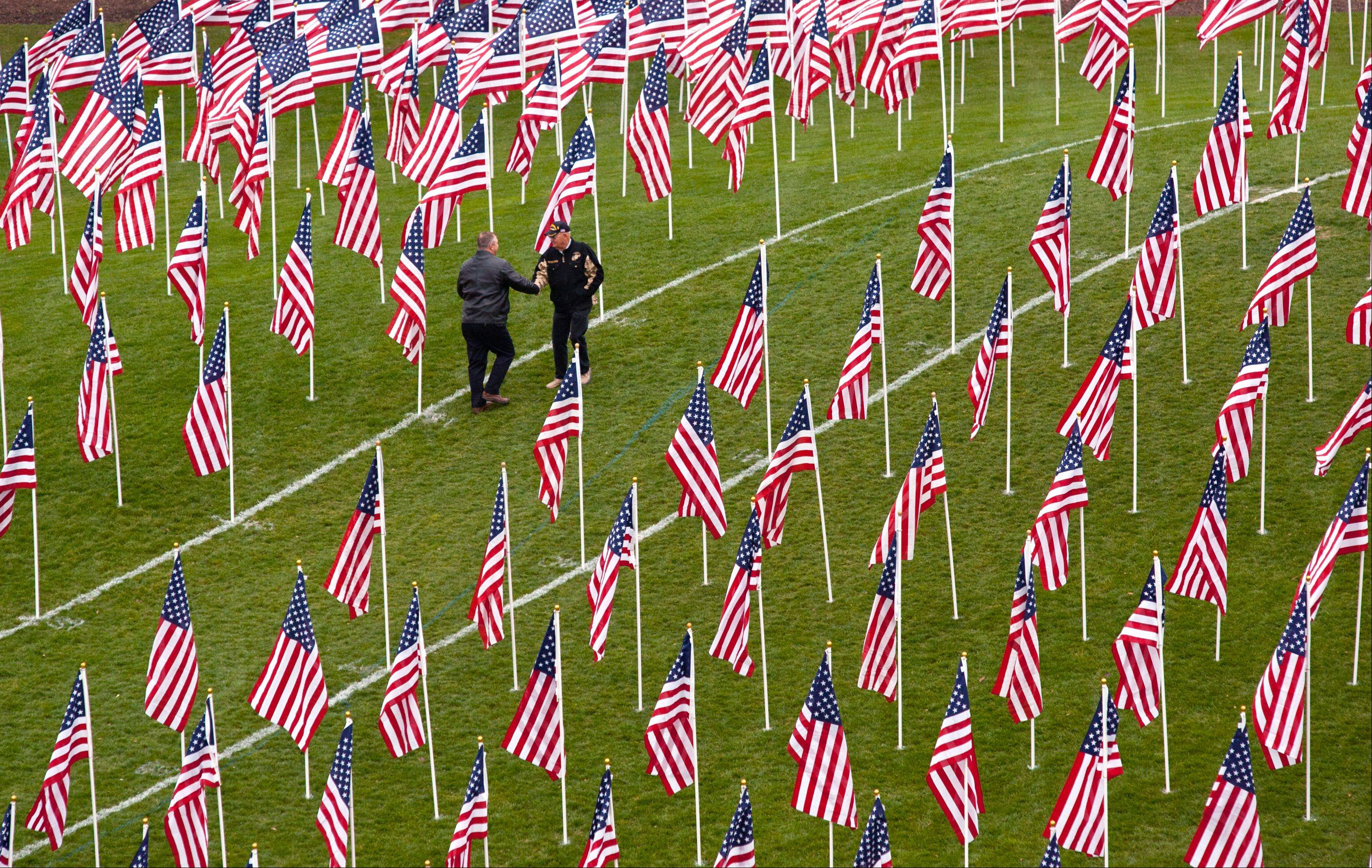 "Visitors can stroll through rows of American flags at the ""Healing Field of Honor"" on Naperville's Rotary Hill until the display's final day on Tuesday."