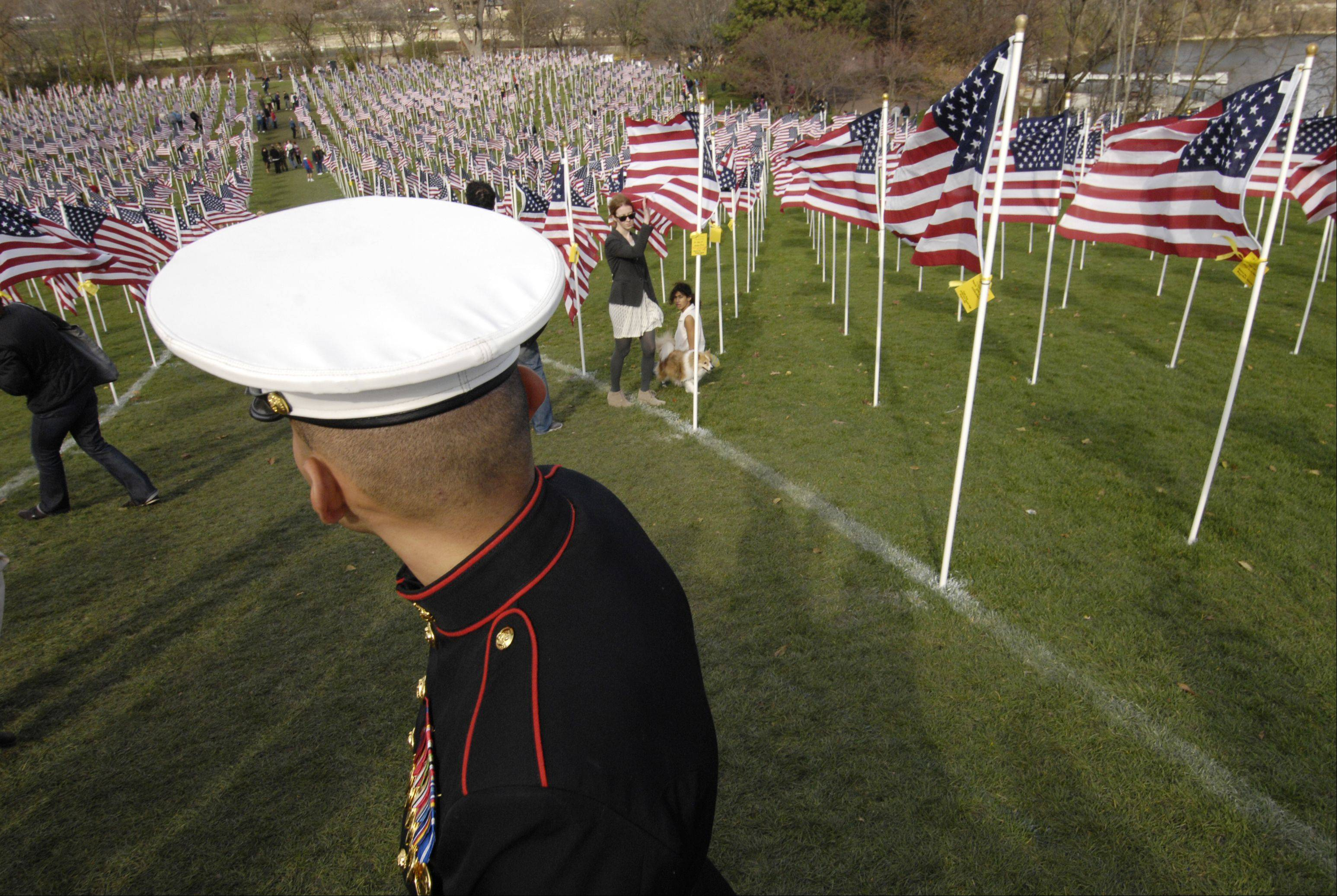 Marine Sergeant Kamal Abdelbaki looks down from Rotary Hill at the Naperville Healing Field that honors veterans.