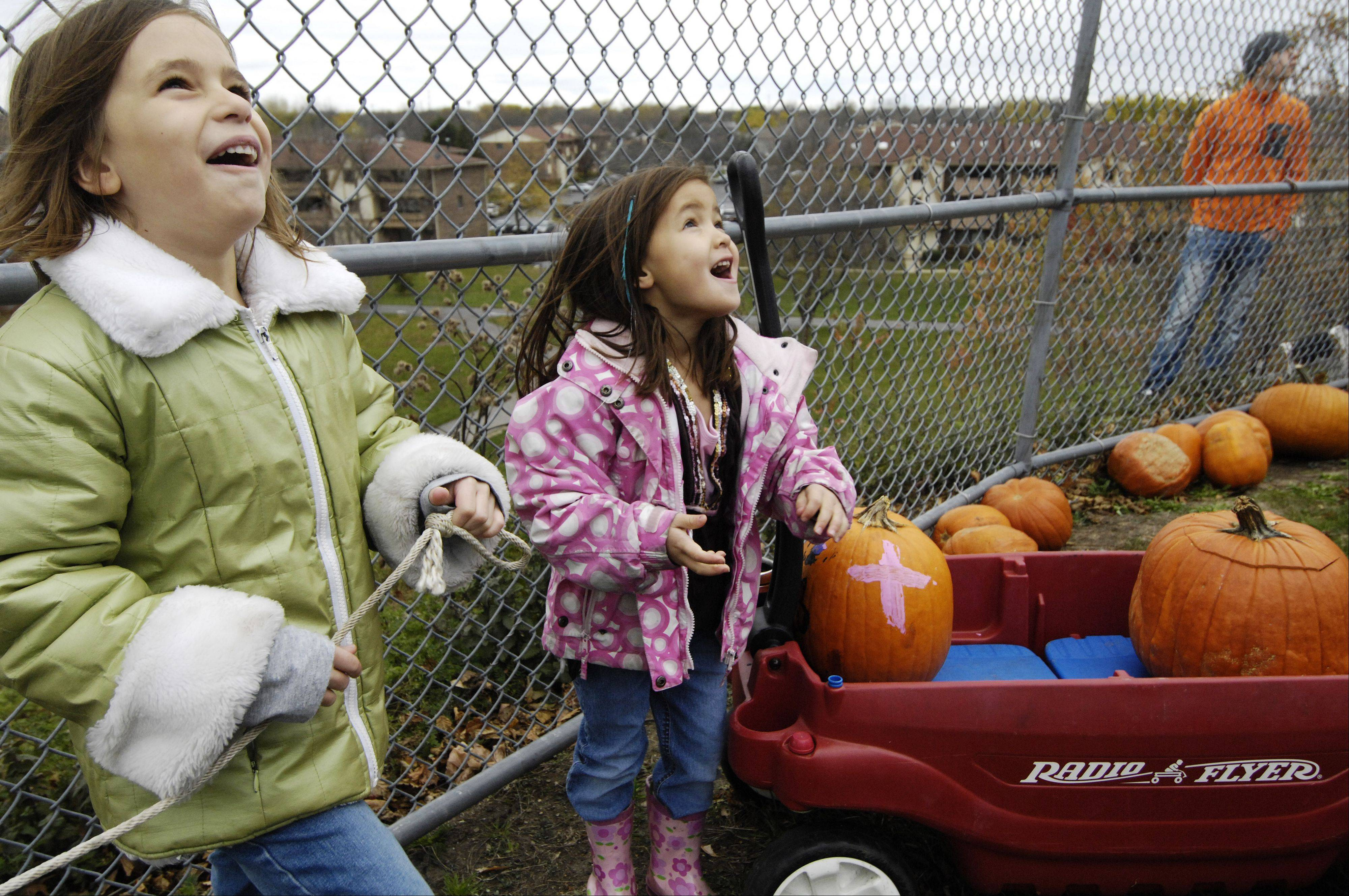 Olivia Lehocky, 6, left, and Olivia Tran, 5, both of Vernon Hills, watch the flight of their pumpkin, which they launched using a trebuchet, during the Vernon Hills Park District Pumpkin Launch at the Century Park North sled hill Saturday.