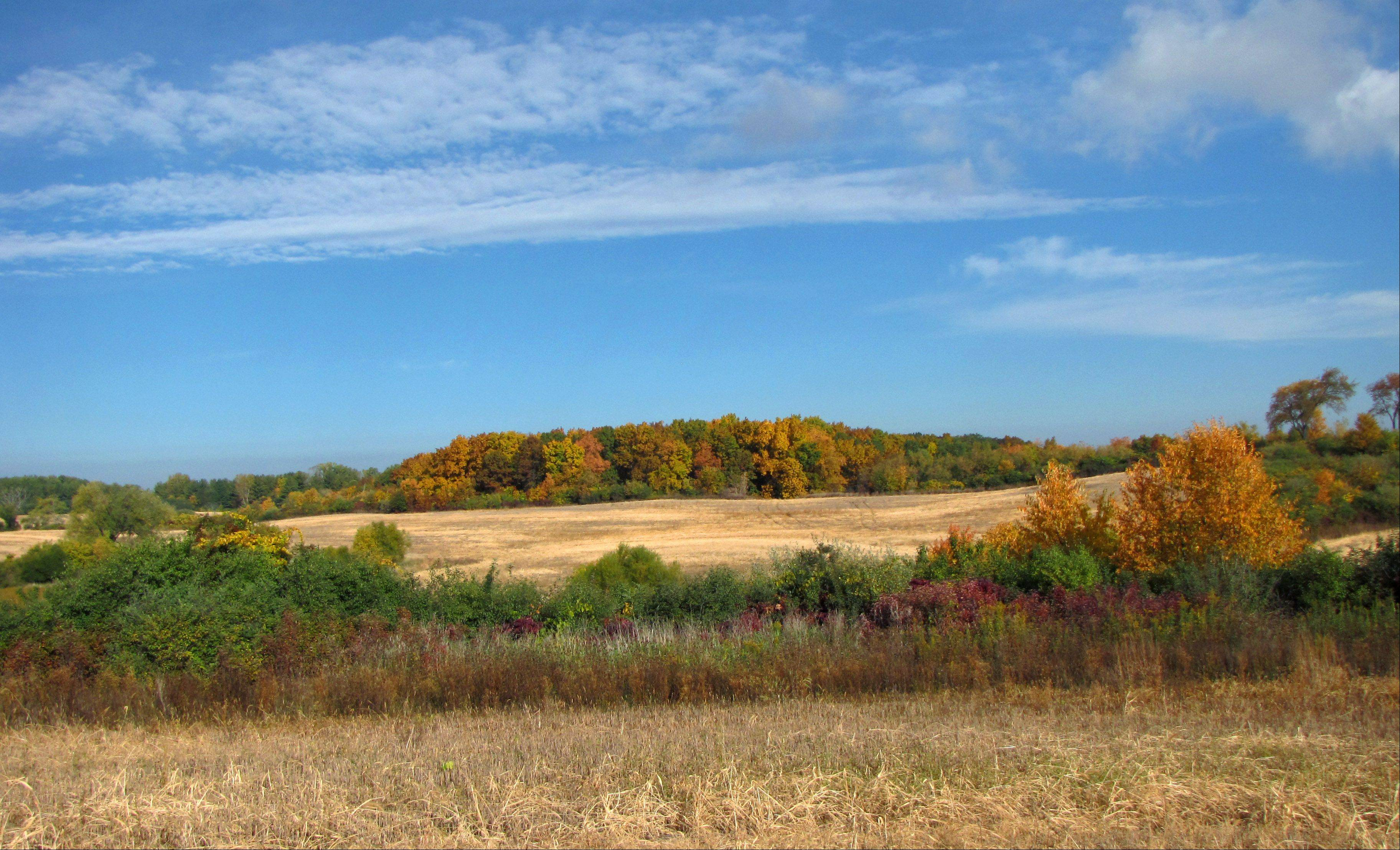 The Lake County Forest Preserve District is pursuing the purchase of 315 acres in the northern part of the county for $10.3 million as an addition to the Pine Dunes forest preserve.