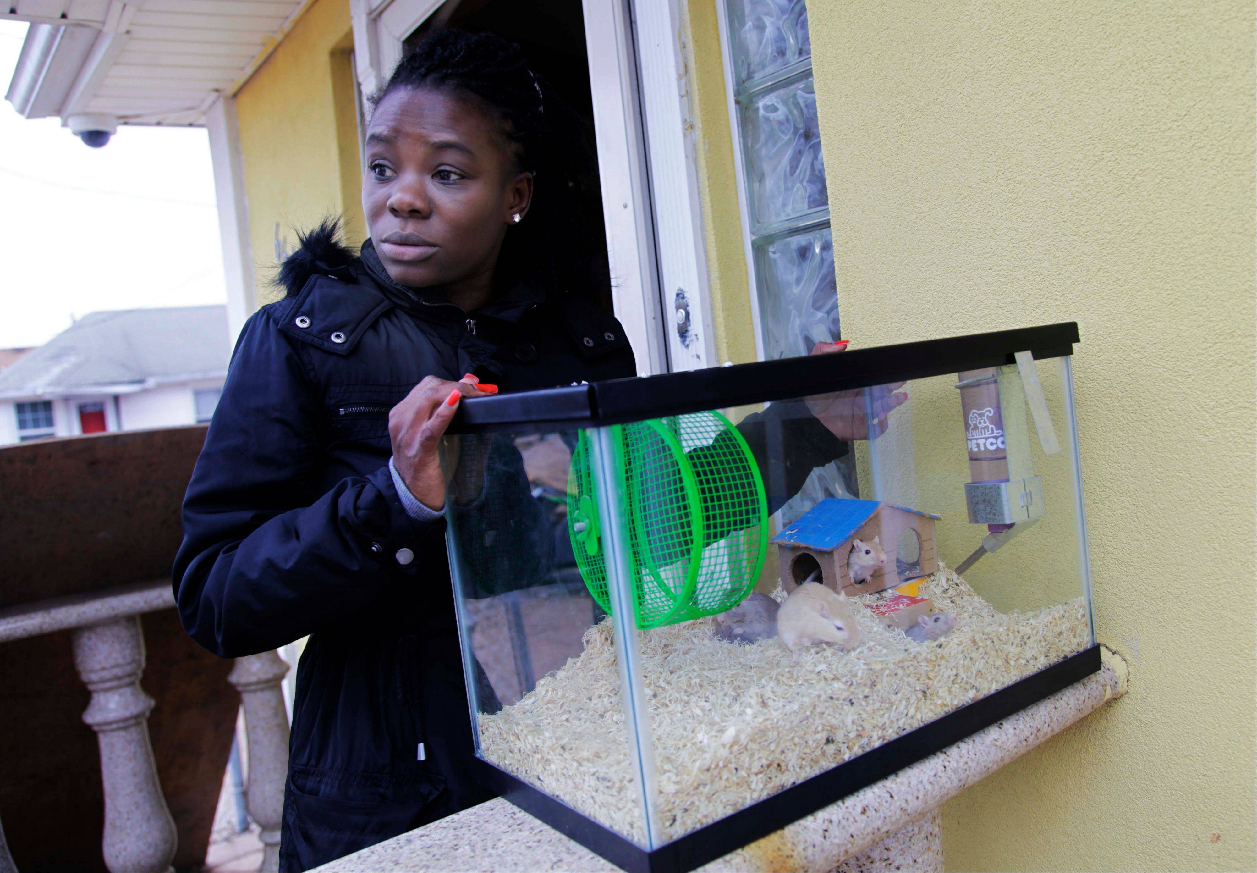 Irmine Celestine agreed to take her nephew's gerbils until his family could find a more permanent place to stay.