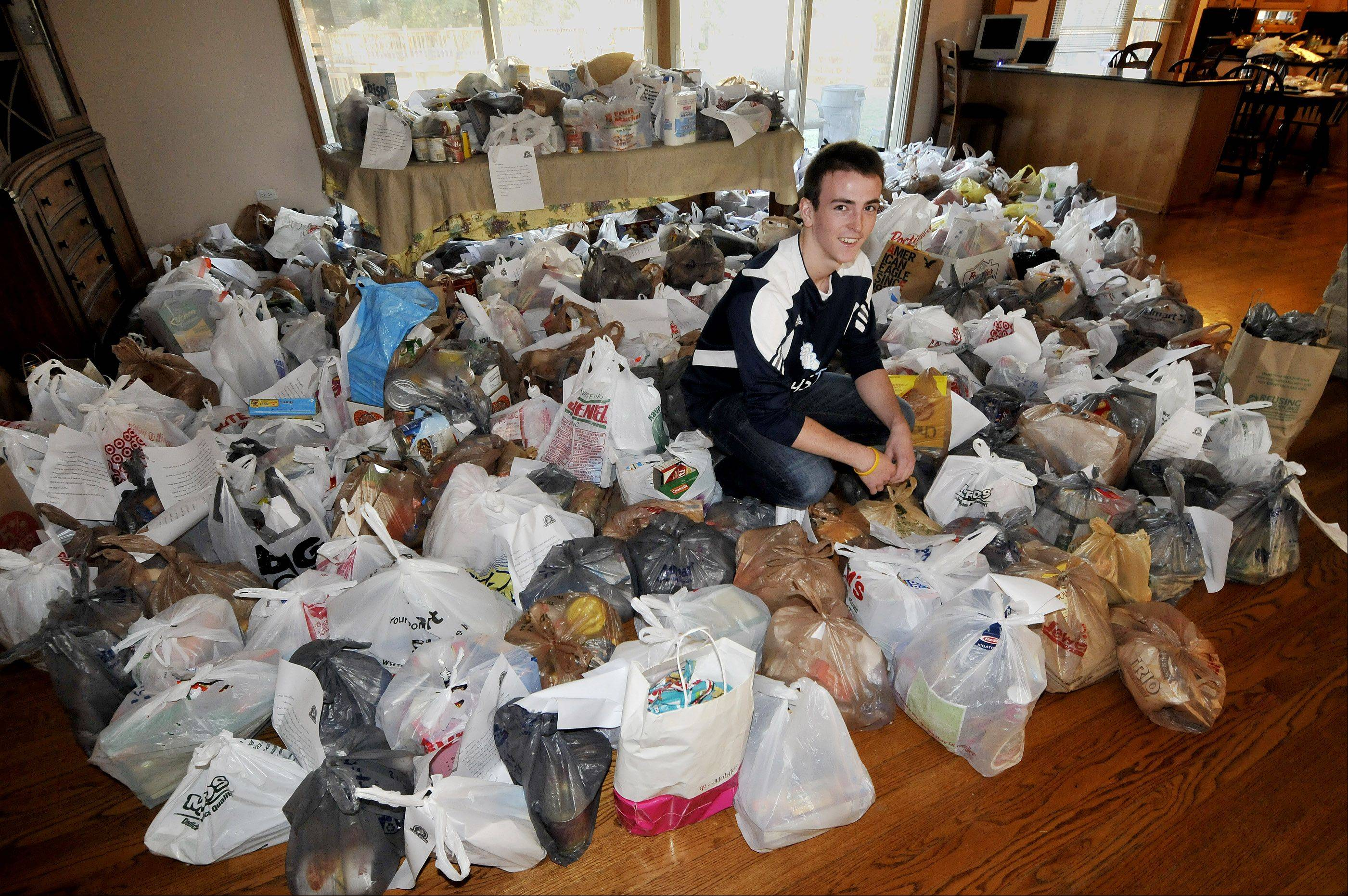 Michael Amerlan, 17, a senior at Lake Park High School in Roselle, has collected roughly 700 bags of food to help those in need.