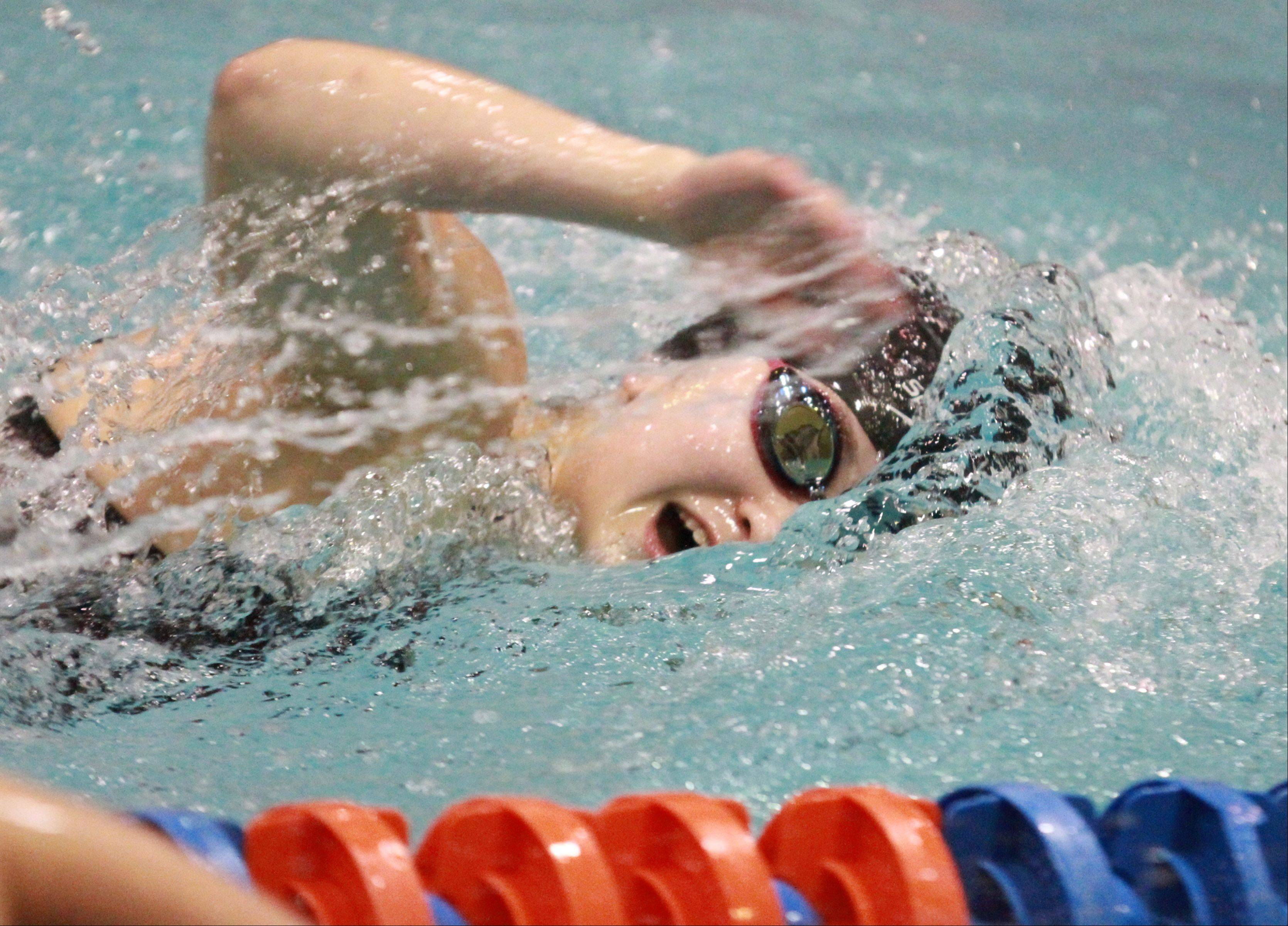 Libertyville's Morgan Dickson placed second in the 500-yard freestyle at the IHSA state championships in Evanston on Saturday.