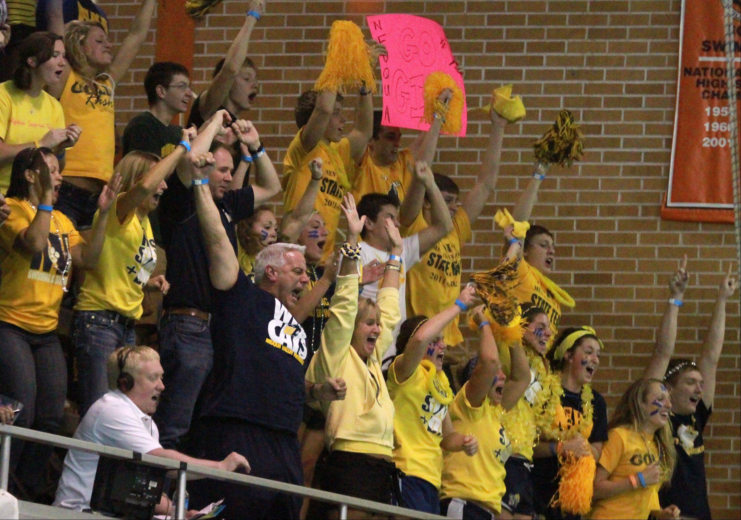 Neuqua Valley fans cheer for Gia Dalesandro who placed first in the 100-yard butterfly at the IHSA state championships in Evanston on Saturday.