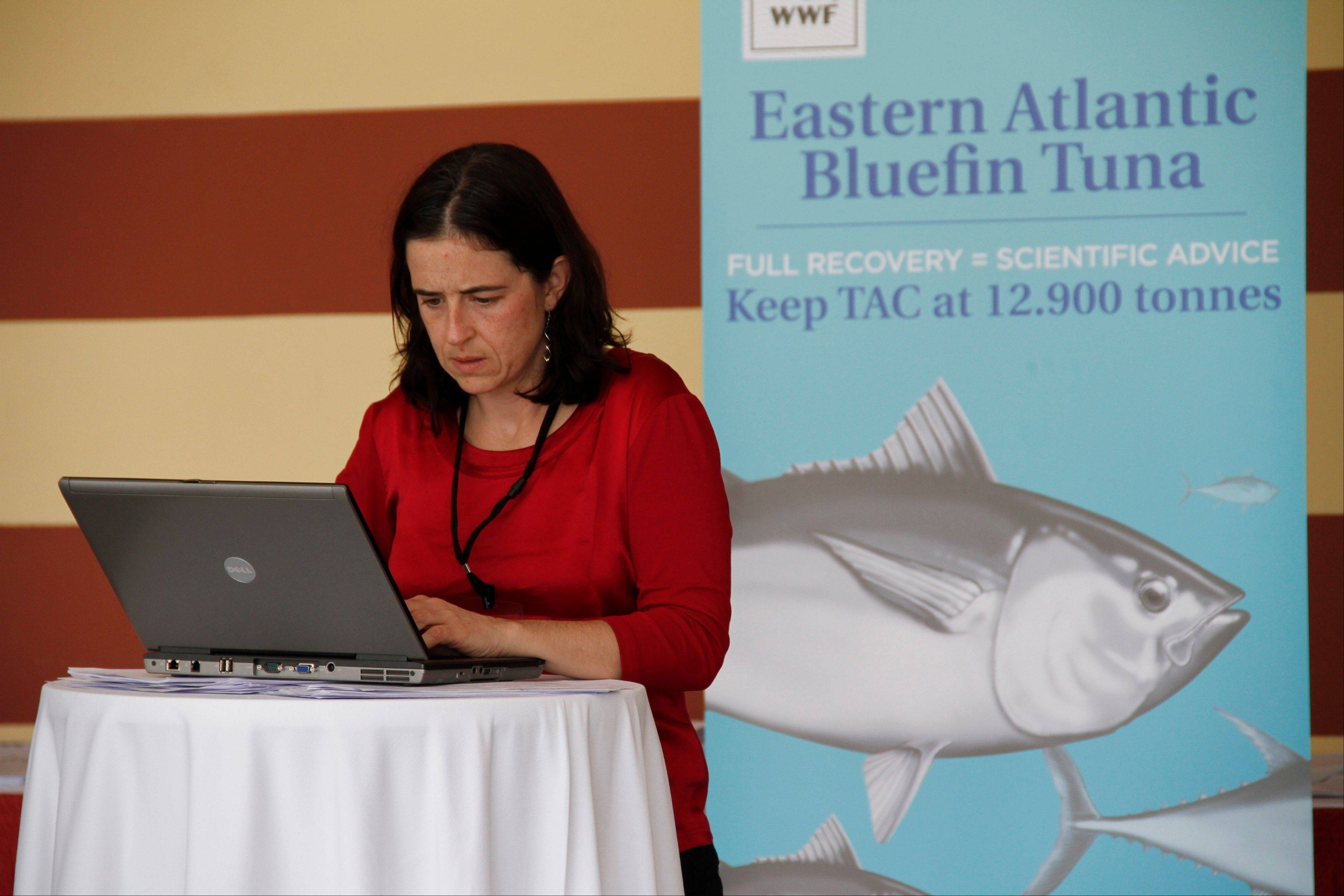 Shark expert Allison Perry of Oceana Europe works on her computer outside the conference for the 18th meeting of the International Commission for the Conservation of Atlantic Tuna in Agadir, Morocco, which declined to put in new protections for endangered shark populations on Monday. Member nations of the fisheries group did agree to maintain strict quotas to stop overfishing of severely depleted bluefin tuna stocks.