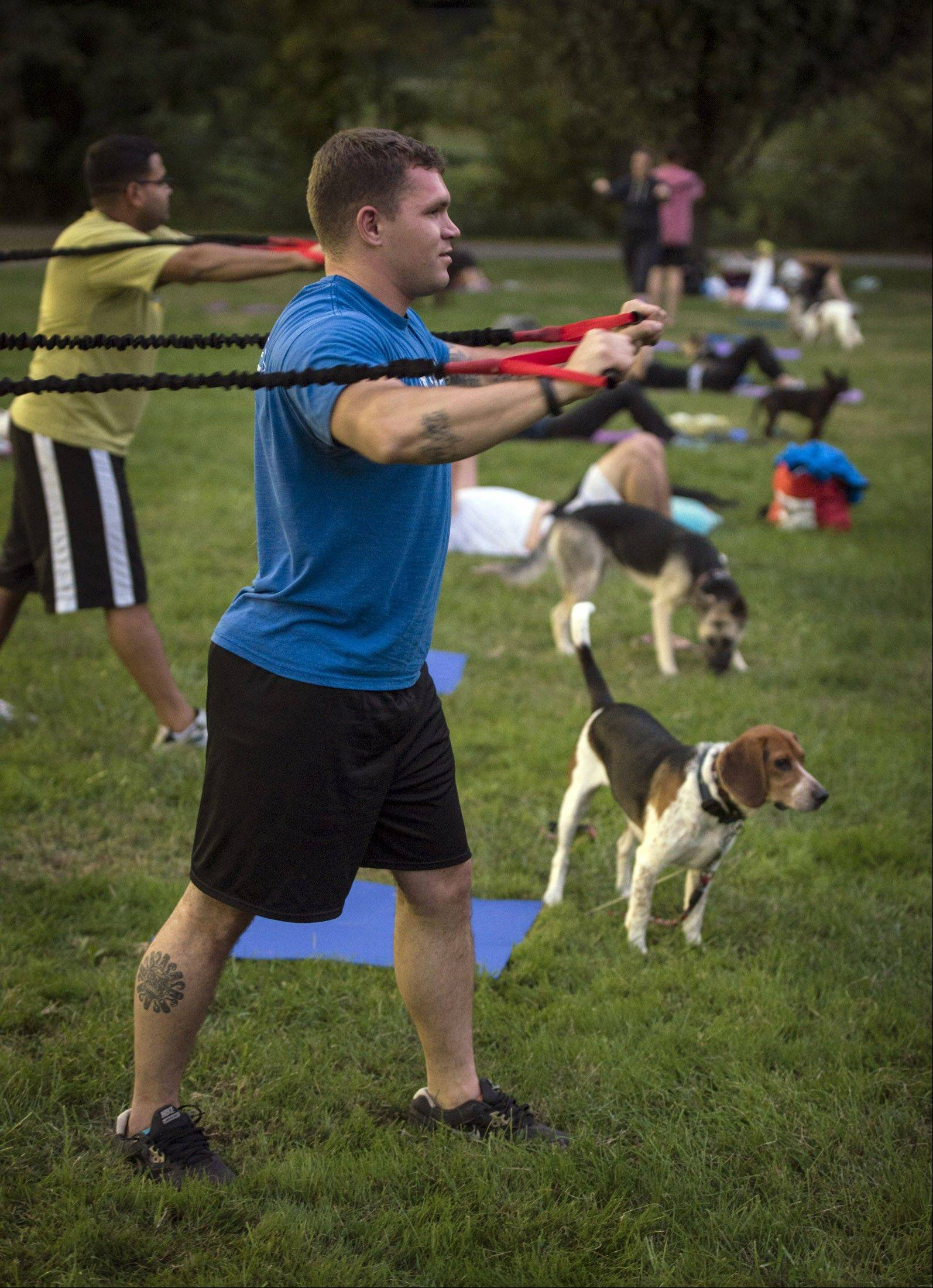 At Thank Dog! Bootcamp in Arlington, Va., Tucker Berry pulls on resistance weight bands as Tugboat stands by.
