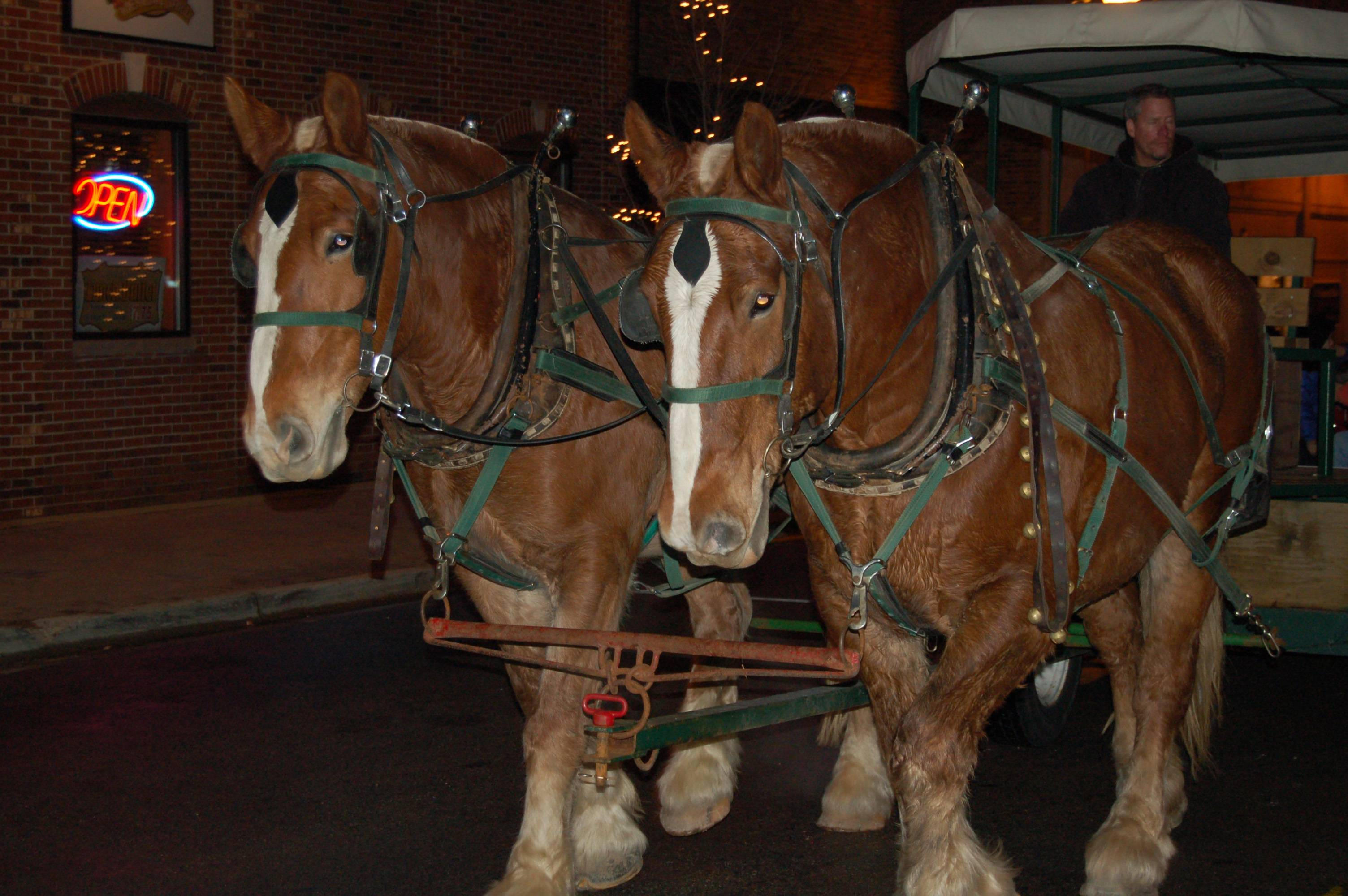 Horse-drawn trolley rides through luminary-lit streets in the historic district are one of many free, family-friendly activities scheduled for West Chicago's Frosty Fest on December 1,