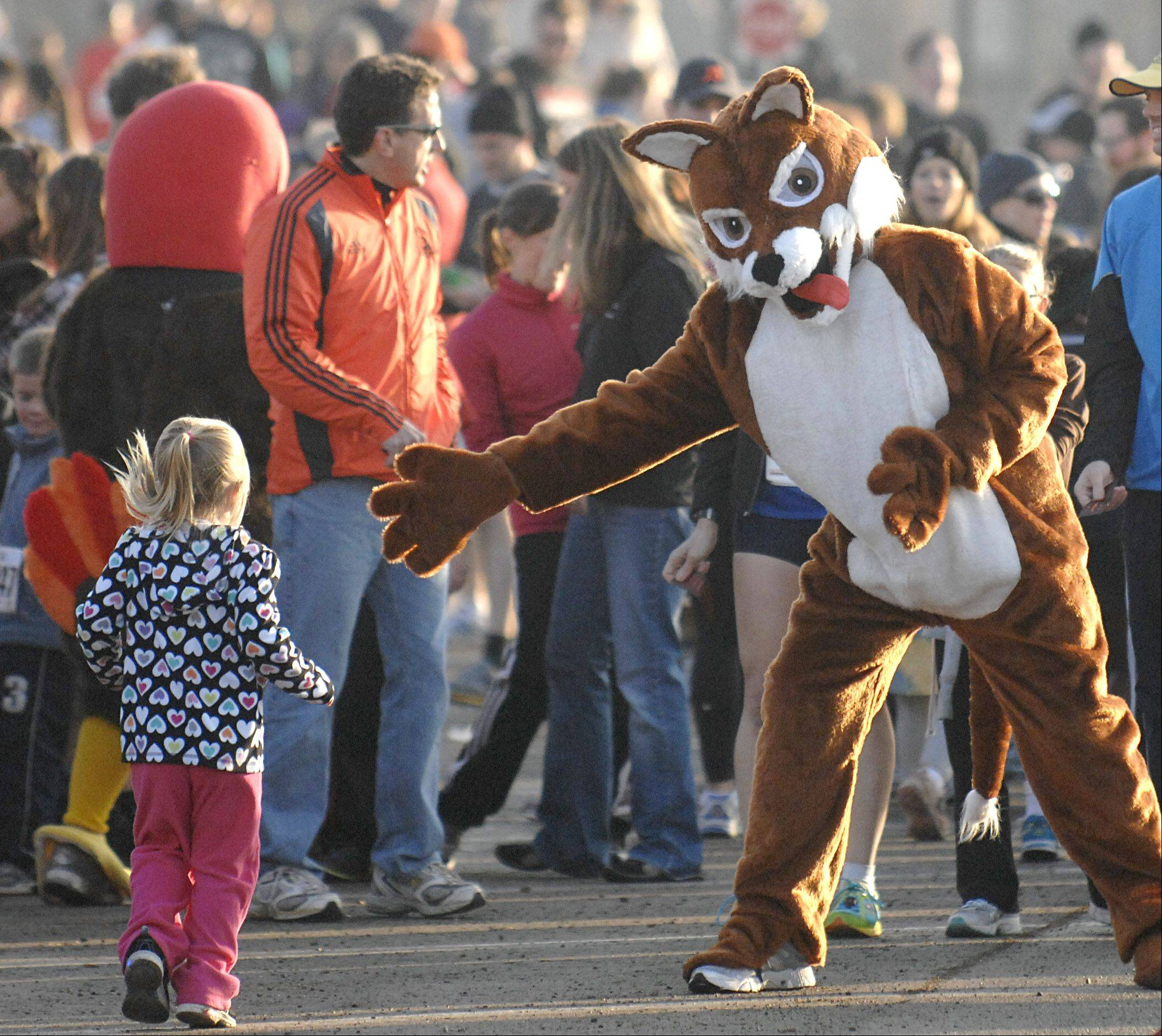 A fox mascot from the 16th annual Fox & Turkey run offers a hand to a finishing youth runners in Batavia on Thanksgiving Day.