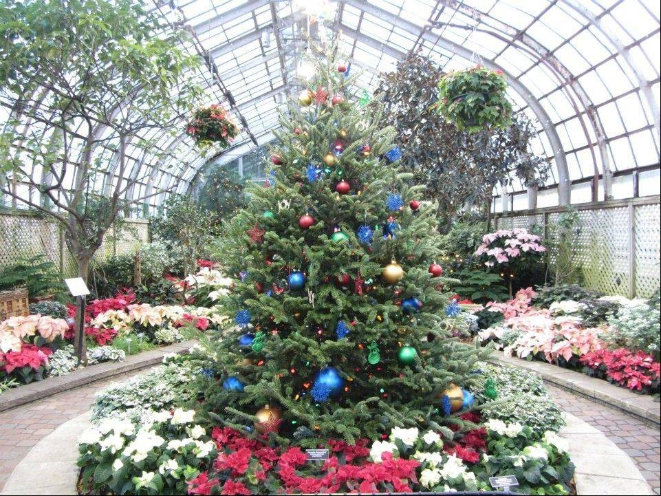 Entertain the senses at Lincoln Park Conservatory's annual Winter Flower and Train Show through Jan. 6.