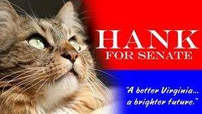 Hank the Cat ran for a U.S. Senate seat from Virginia in a write-in campaign that fell considerably short this month. Nevertheless, he joined the long list of names voters have scribbled on ballots when the printed choices weren't satisfactory.