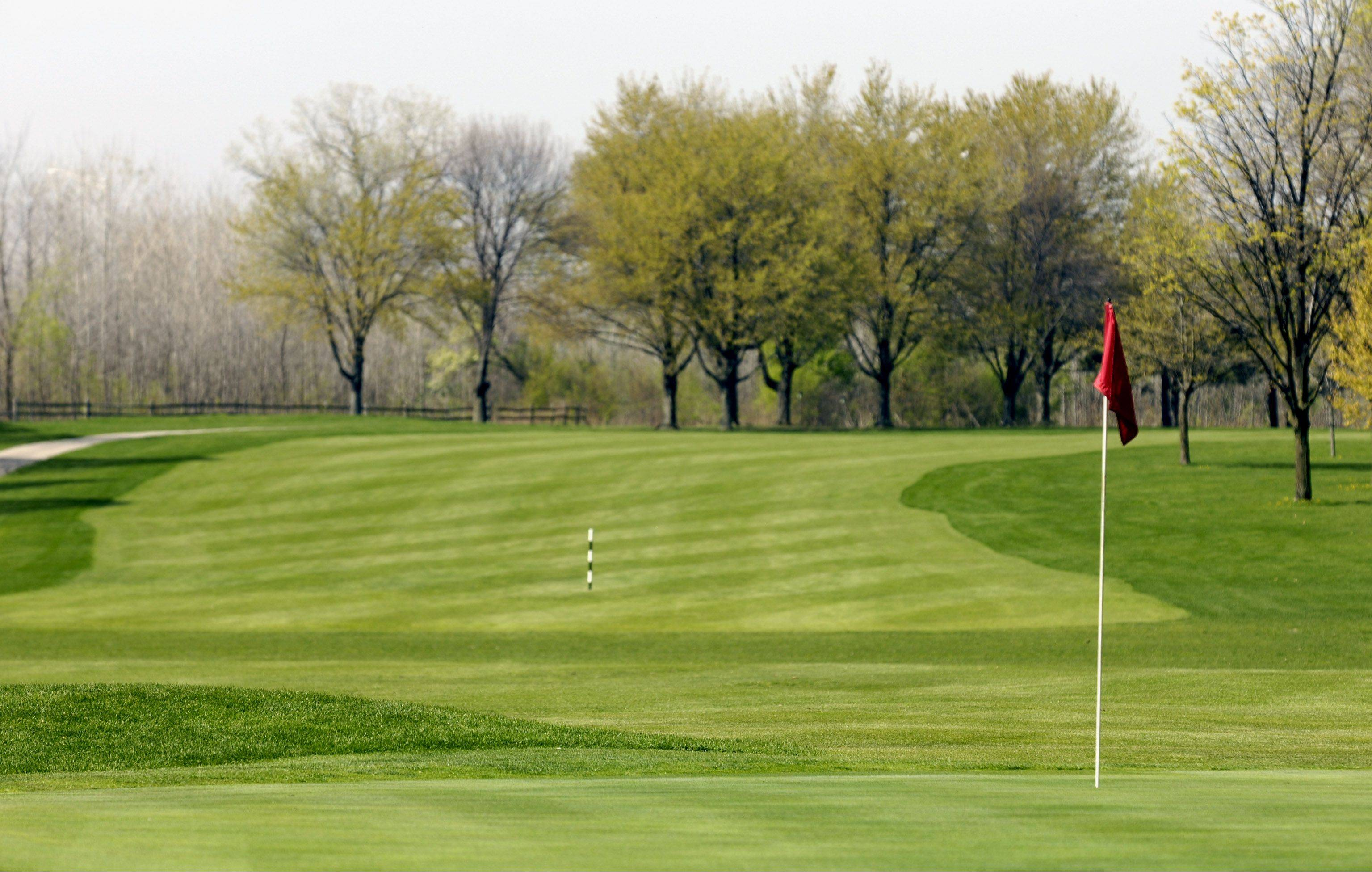 DuPage County Forest Preserve officials are paying about $95,000 to an engineering firm to design the next phase of a $19.3 million improvement plan that would ease flooding and improve ecology at Oak Meadows Golf Club in Addison.