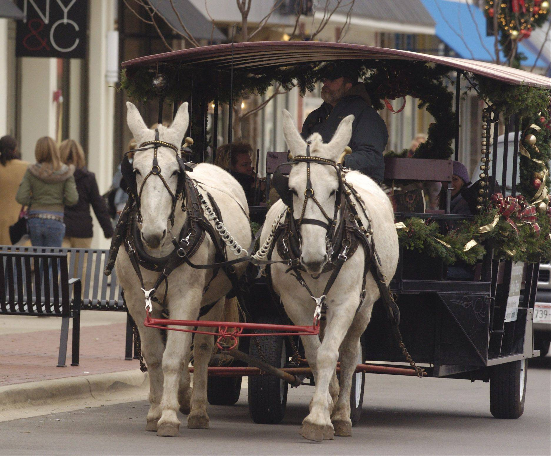 A horse-drawn carriage/trolley will take shoppers from store to store on Sunday afternoons at Geneva Commons this holiday season.